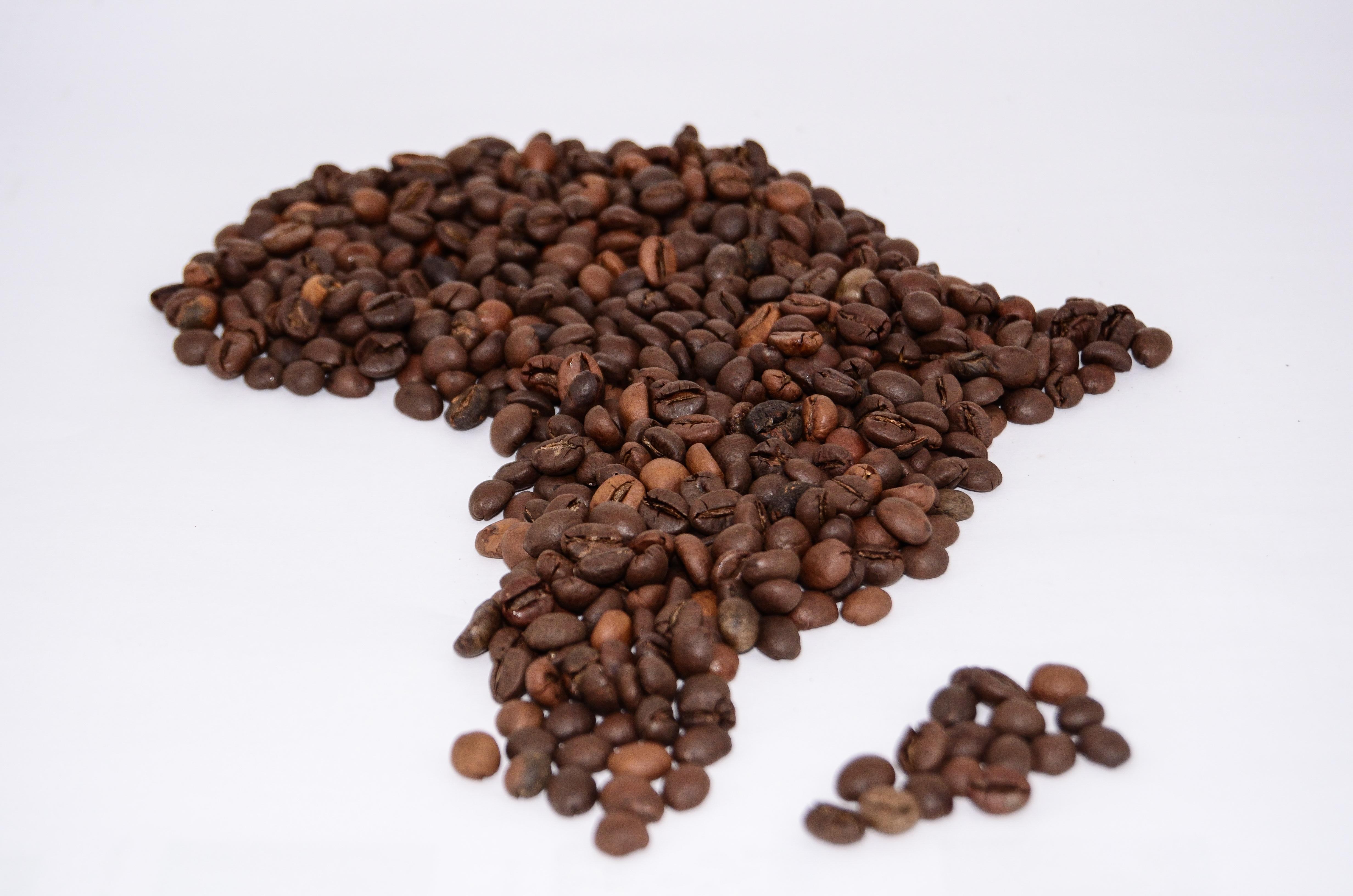 Med smak av afrika