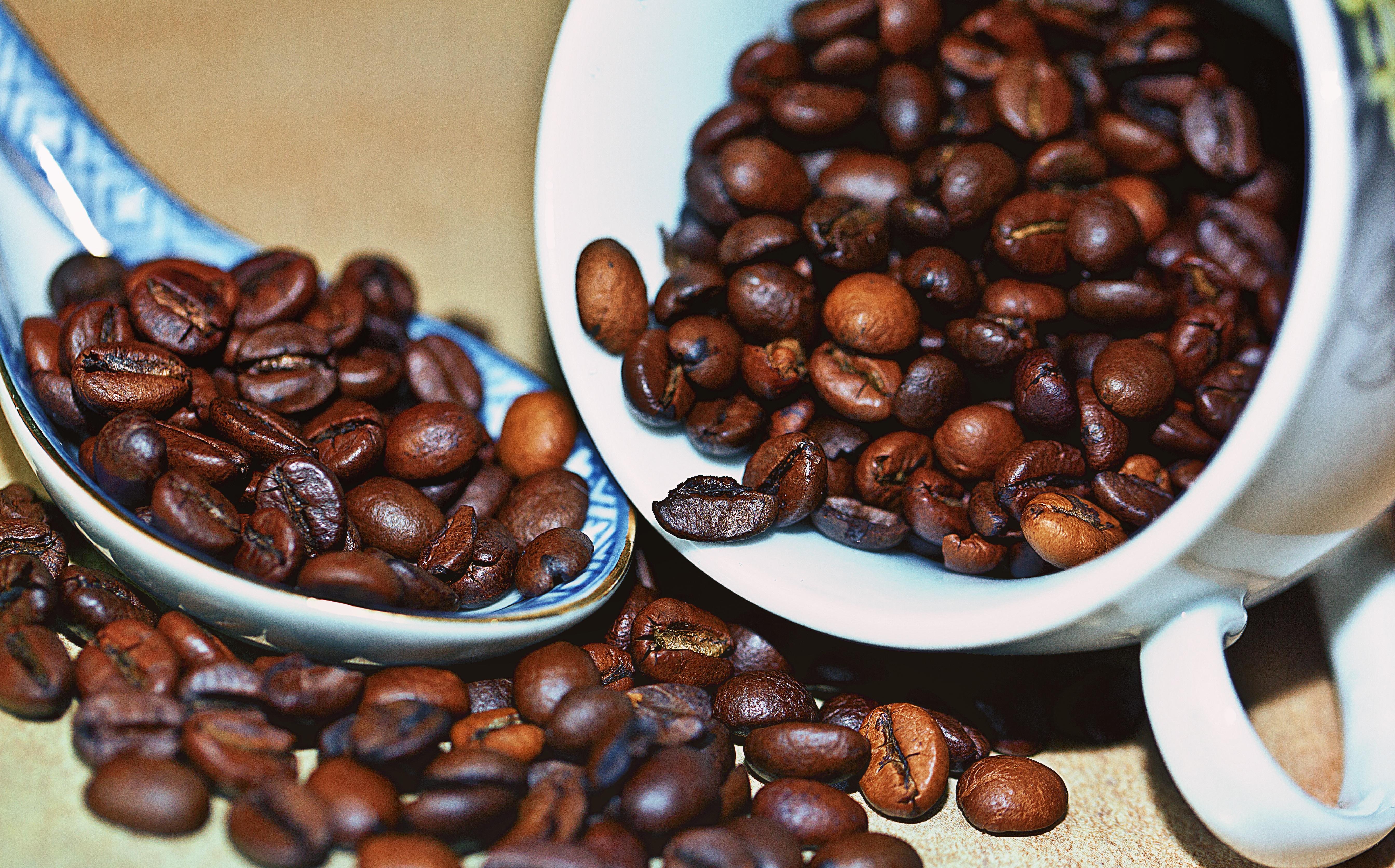 банкетный кофейные картинки арабика поиска работы