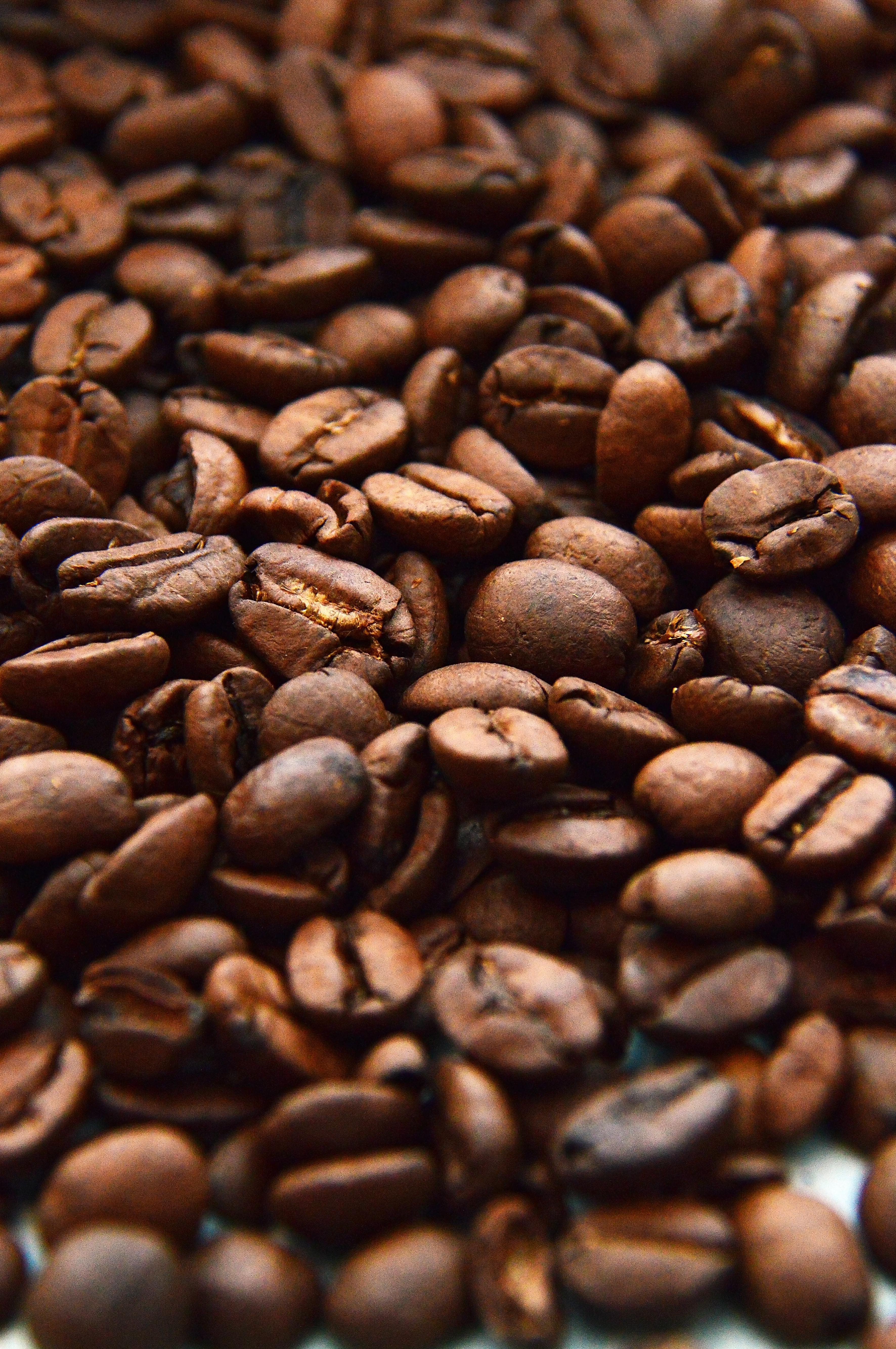 Free Images Beans Background Texture Food Brown Espresso Caffeine Drink Aroma Black Grain Roasted Cafe Mocha White Closeup Energy Dark