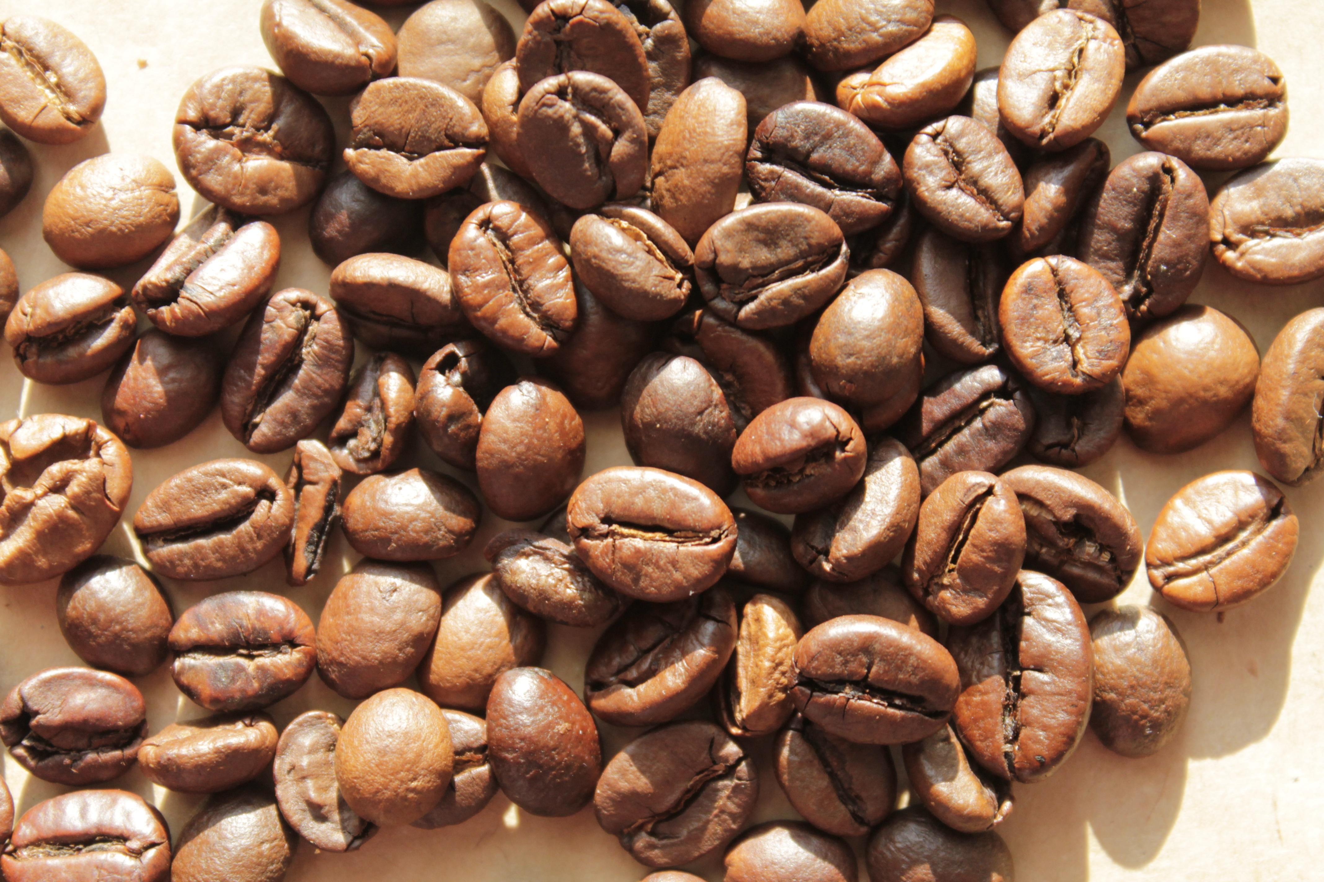 Кофейные зерна фото картинки