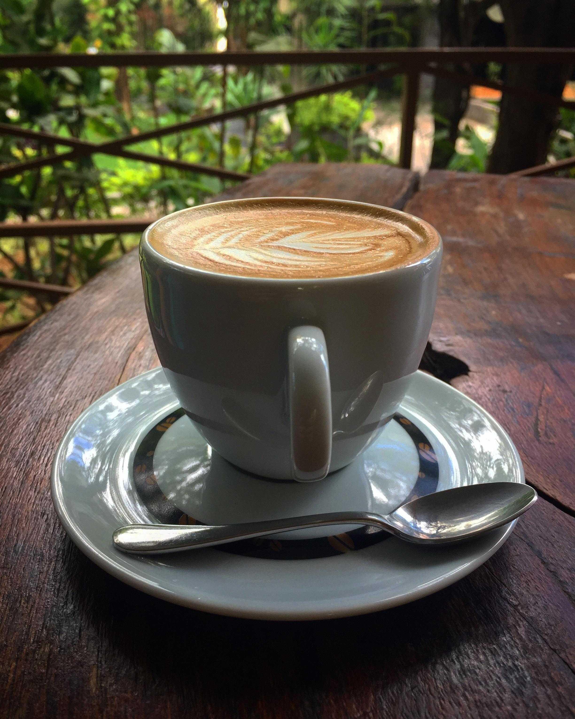 отличаются друг красивая картинка кофейной чашки одной стороны