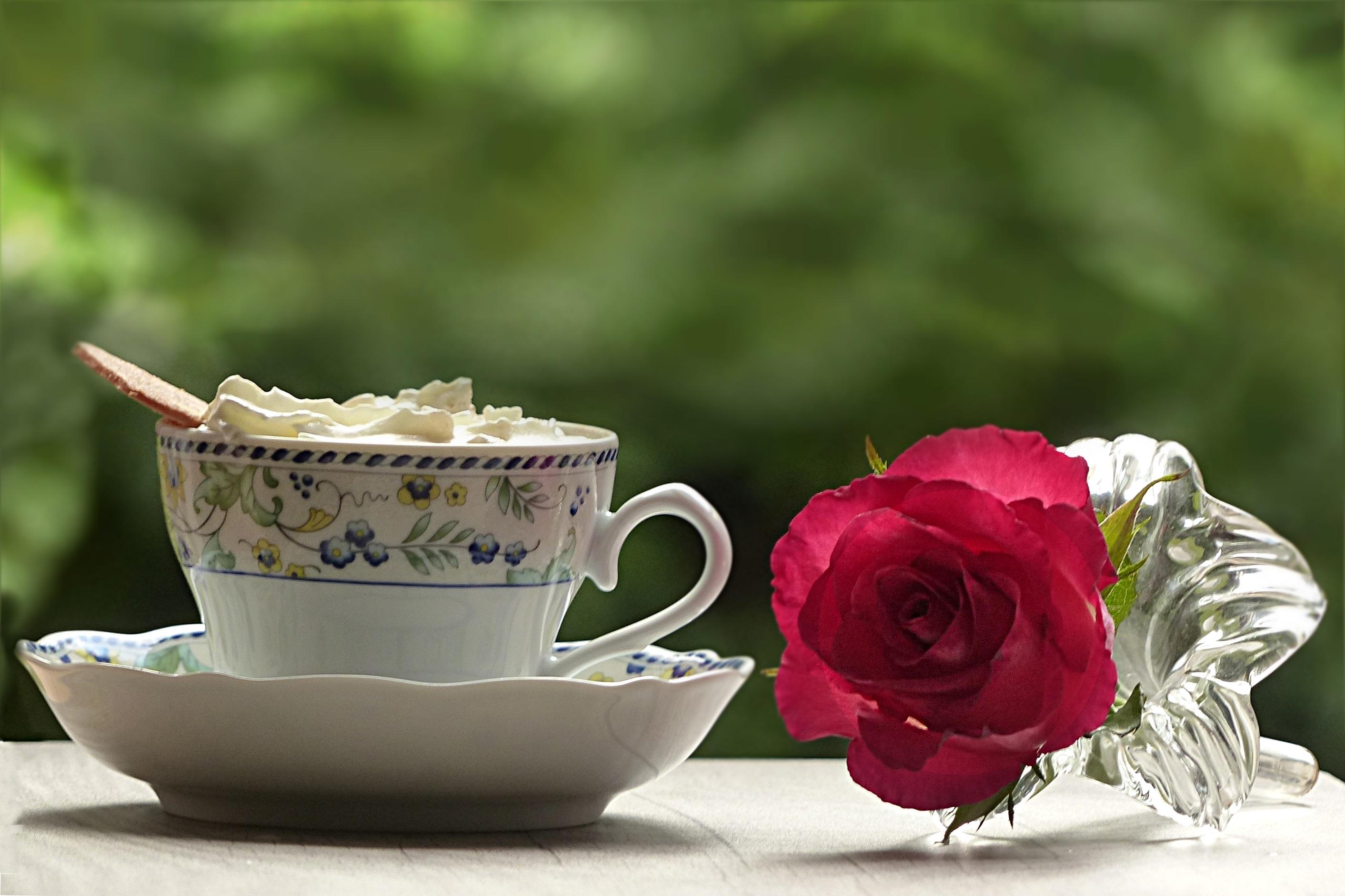 где можно кофе белая посуда роза картинки фото заботы