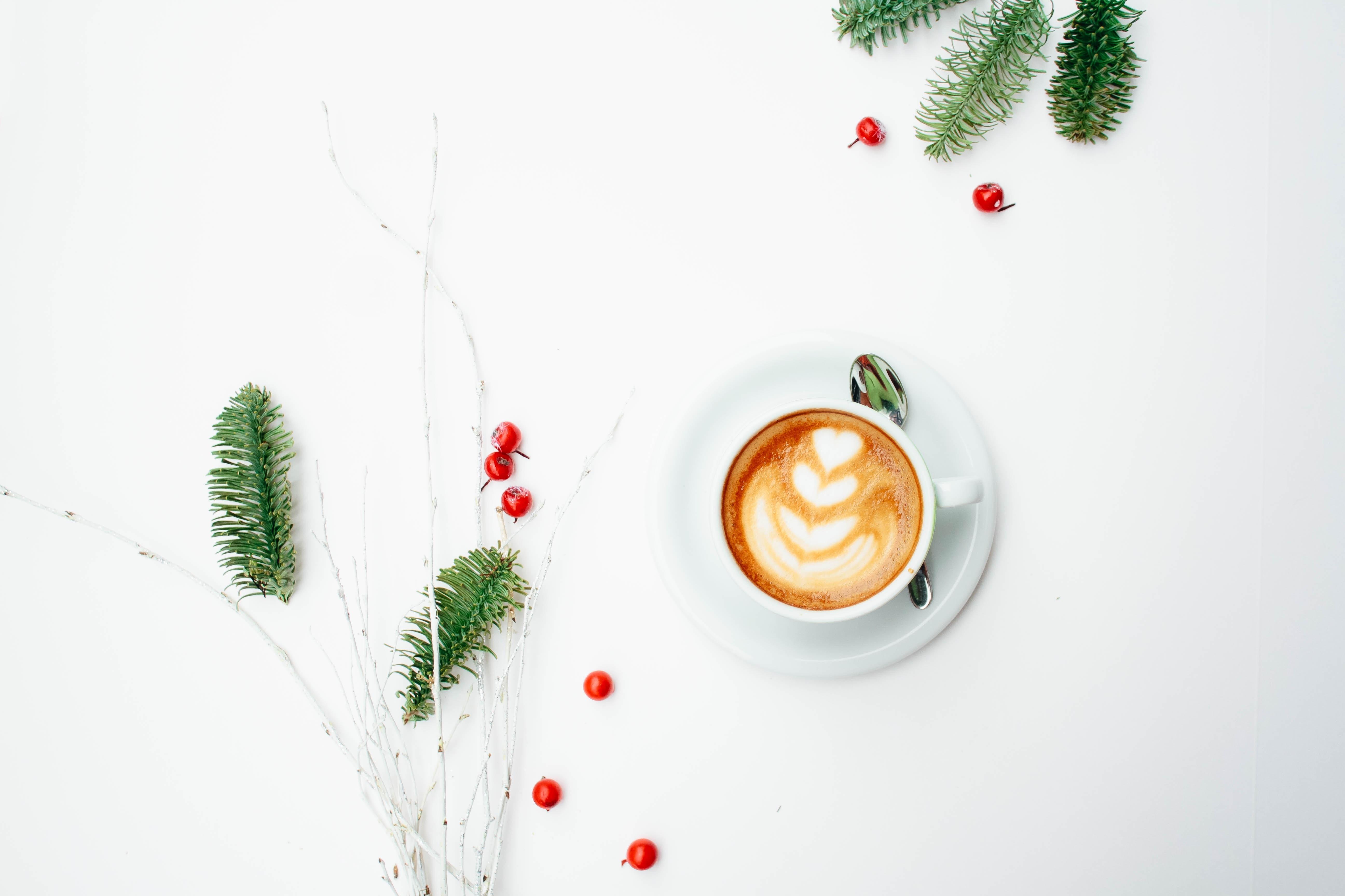 Kostenlose foto : Kaffee, Pflanze, Frucht, Beere, Blatt ...