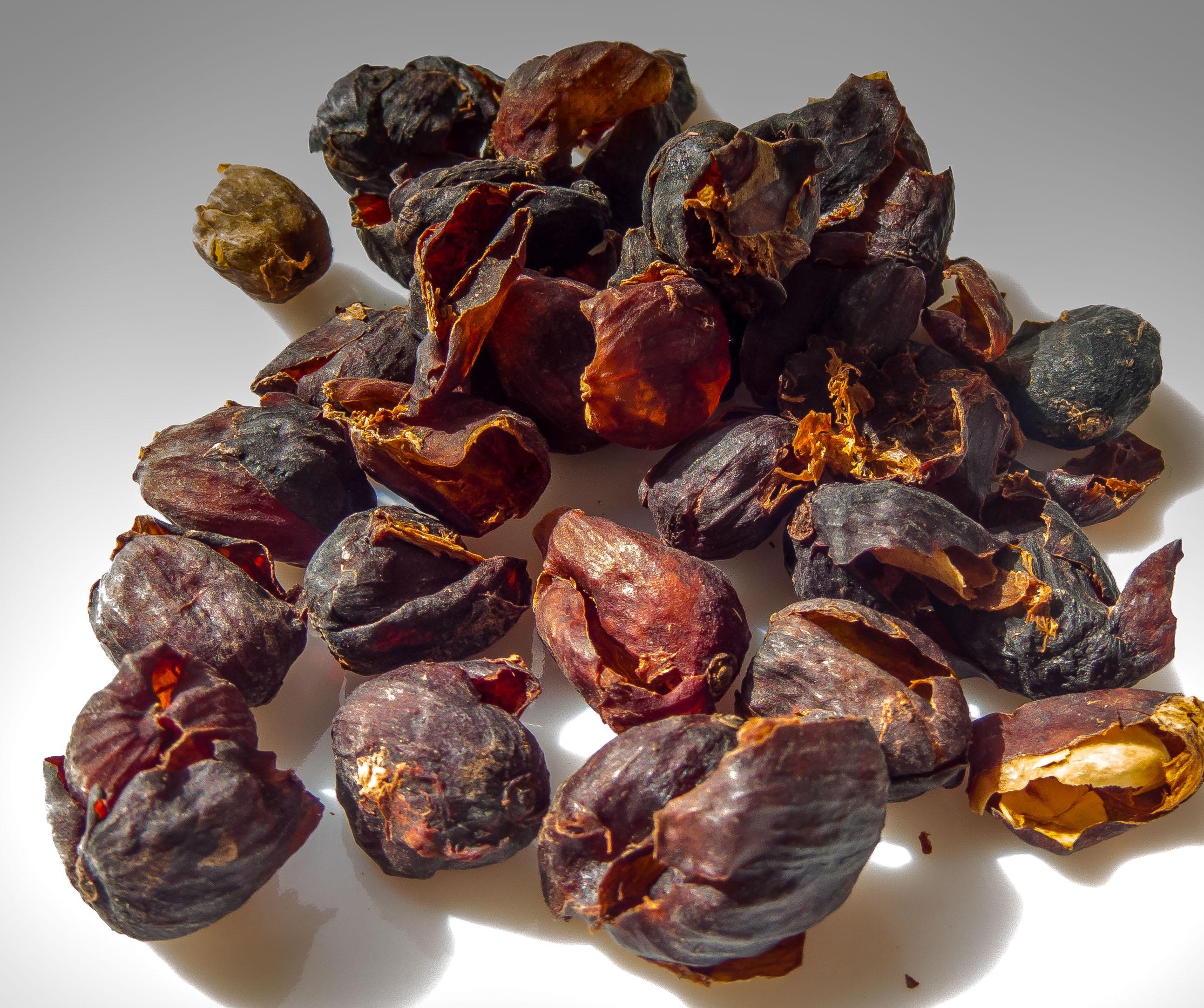 Gambar Kopi Menanam Buah Makanan Menghasilkan Perhiasan Meja Makan Amber Kulit Auriculariales Coffea Batu Permata Kurma Fashion Aksesori