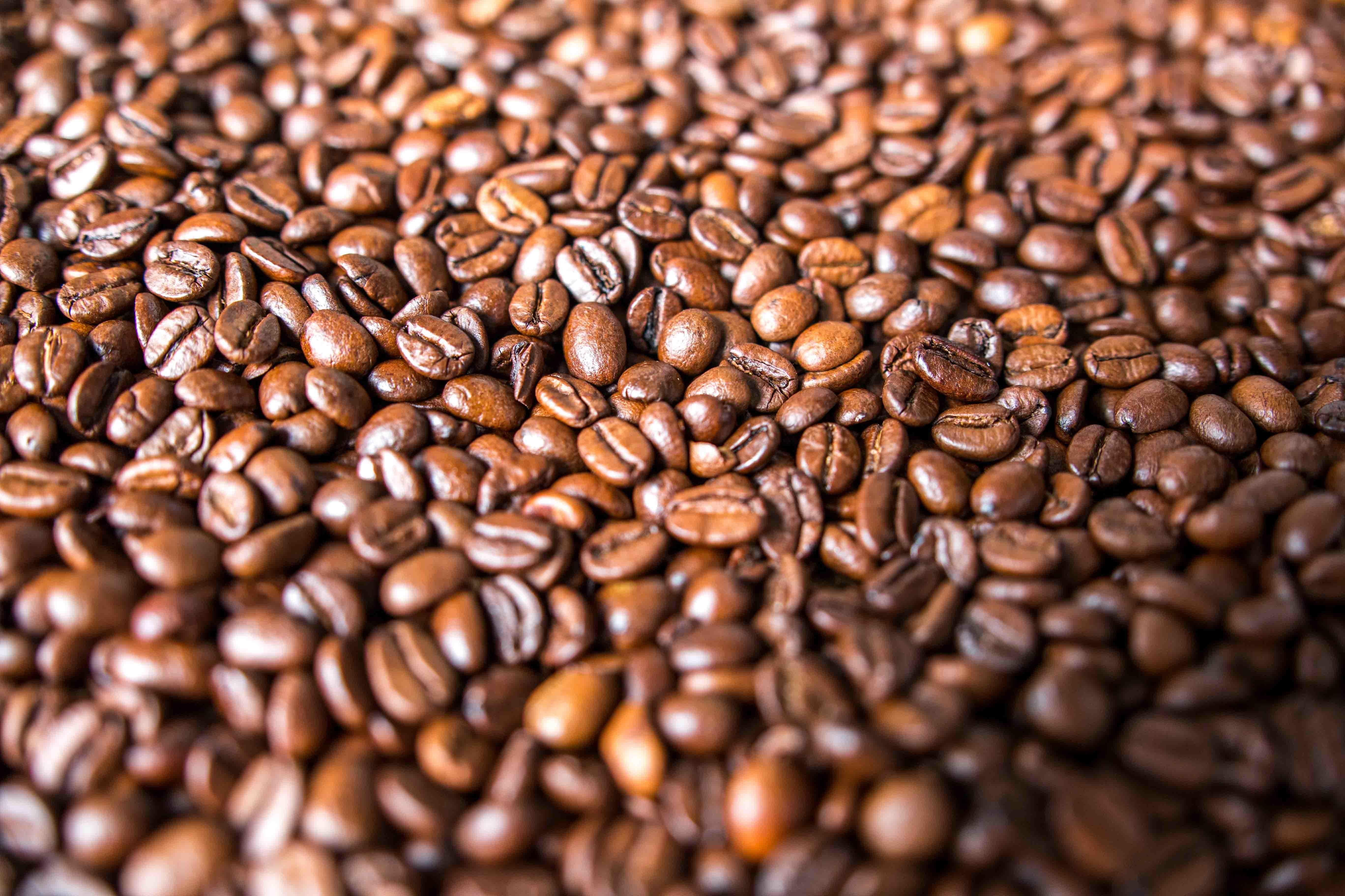 Free Images : seed, coffee bean, food, produce, crop ...