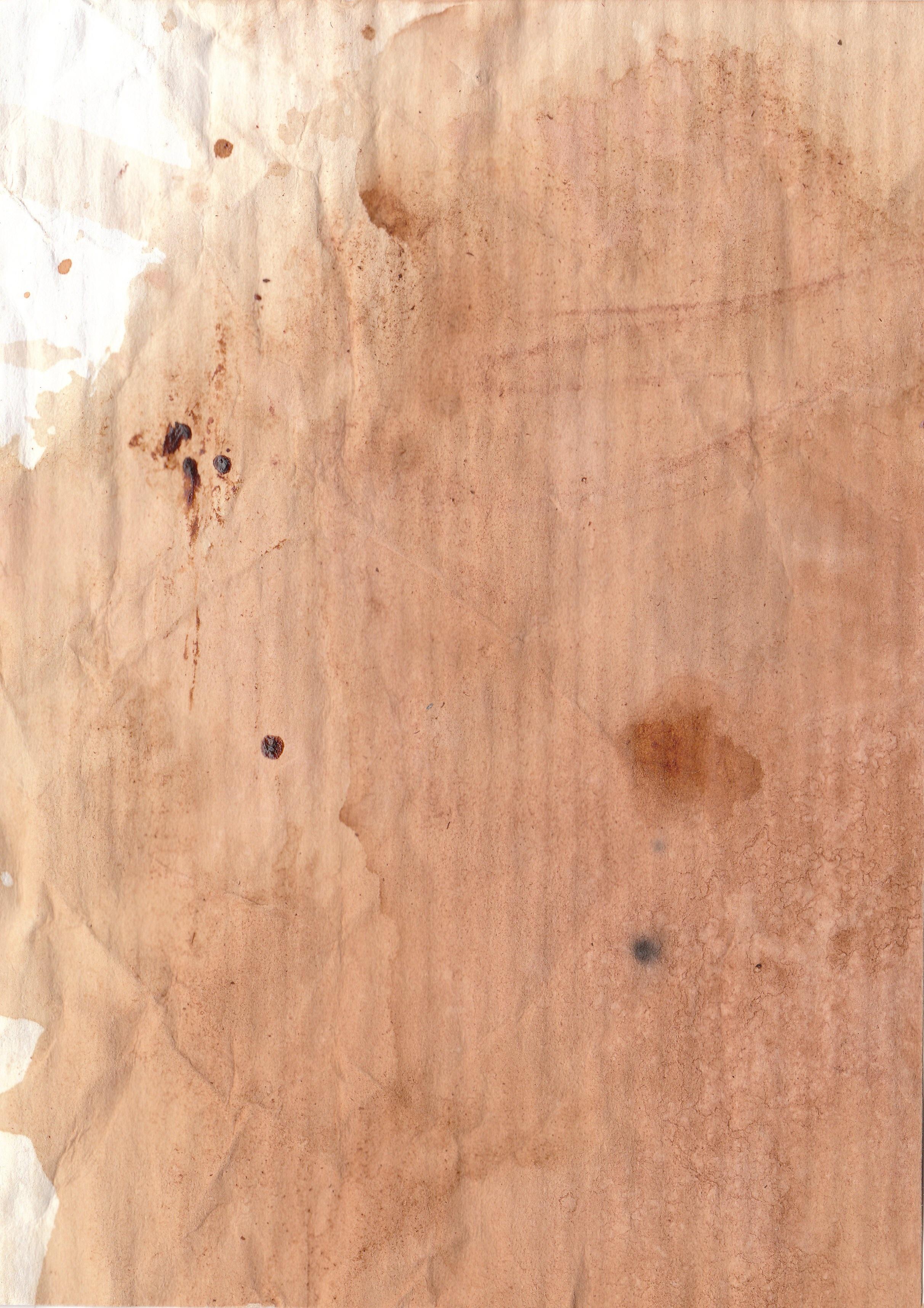 무료 이미지 : 커피, 목재, 조직, 무늬, 종이, 얼룩, 배경, 견목 ...