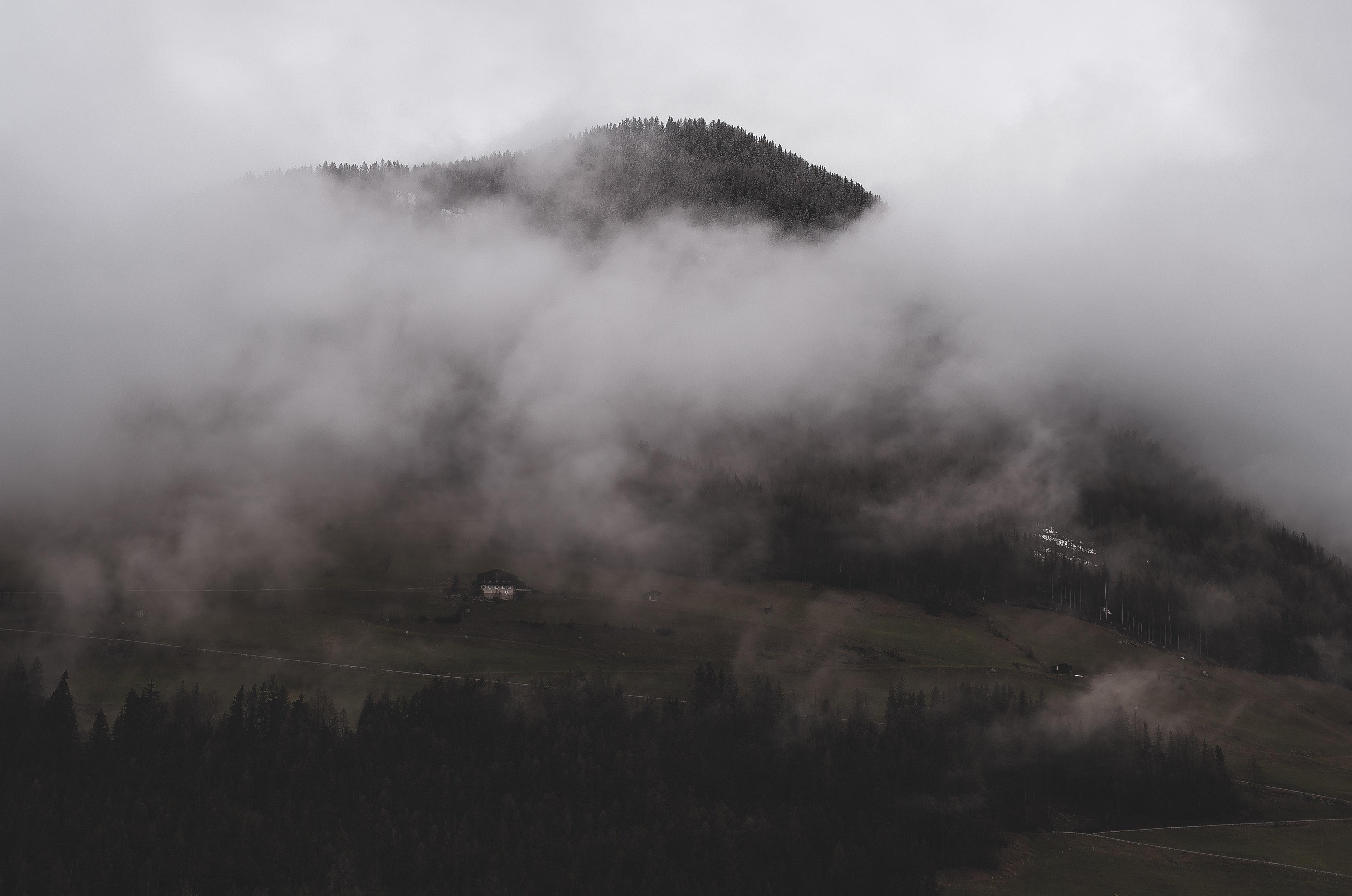 Free Images : cold, desktop wallpaper, fog, foggy, landscape, light