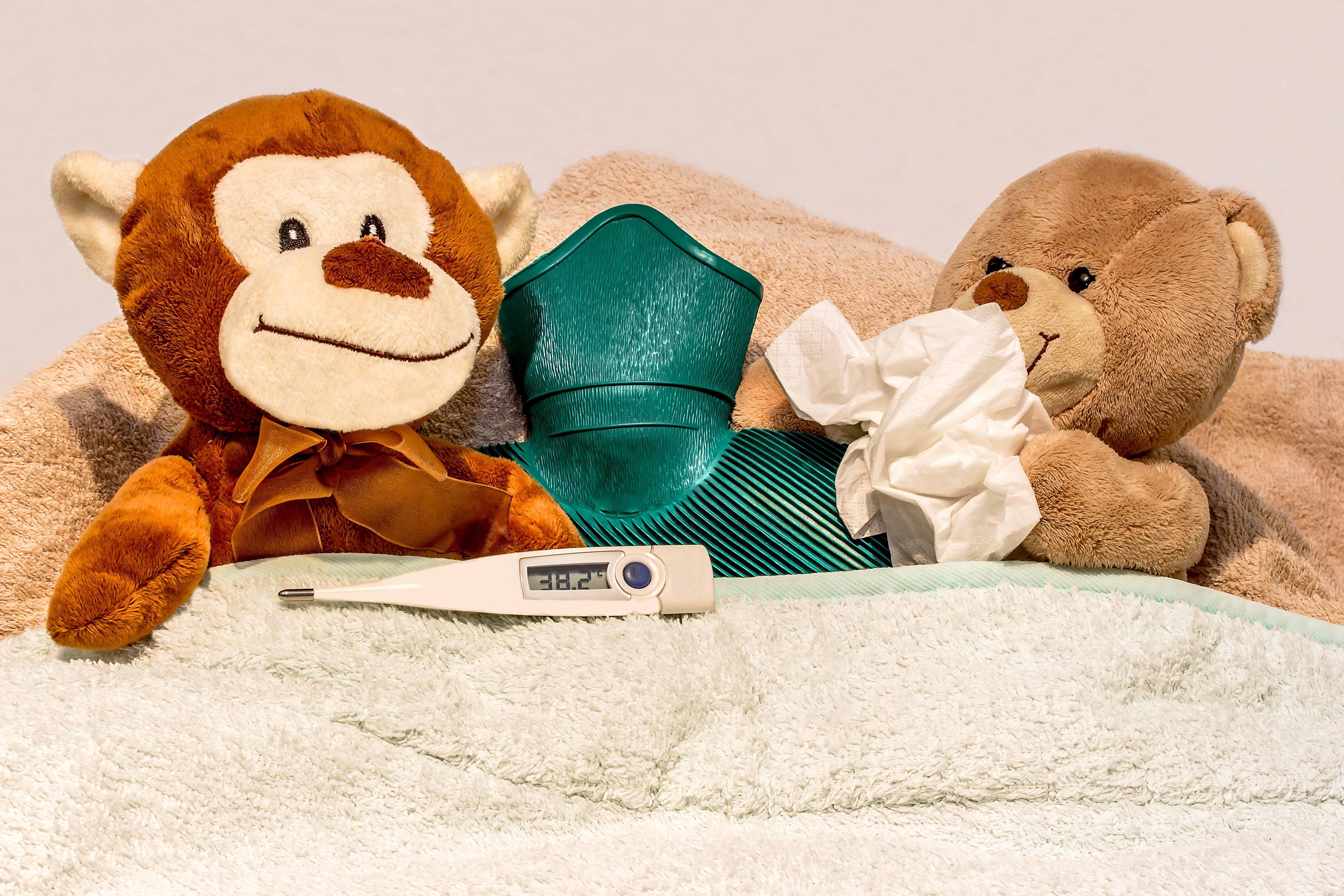 Gambar dingin beristirahat mainan beruang teddy tekstil gambar dingin beristirahat mainan beruang teddy tekstil selimut mewah diberkatilah anda mencium memulihkan boneka beruang saputangan altavistaventures Gallery