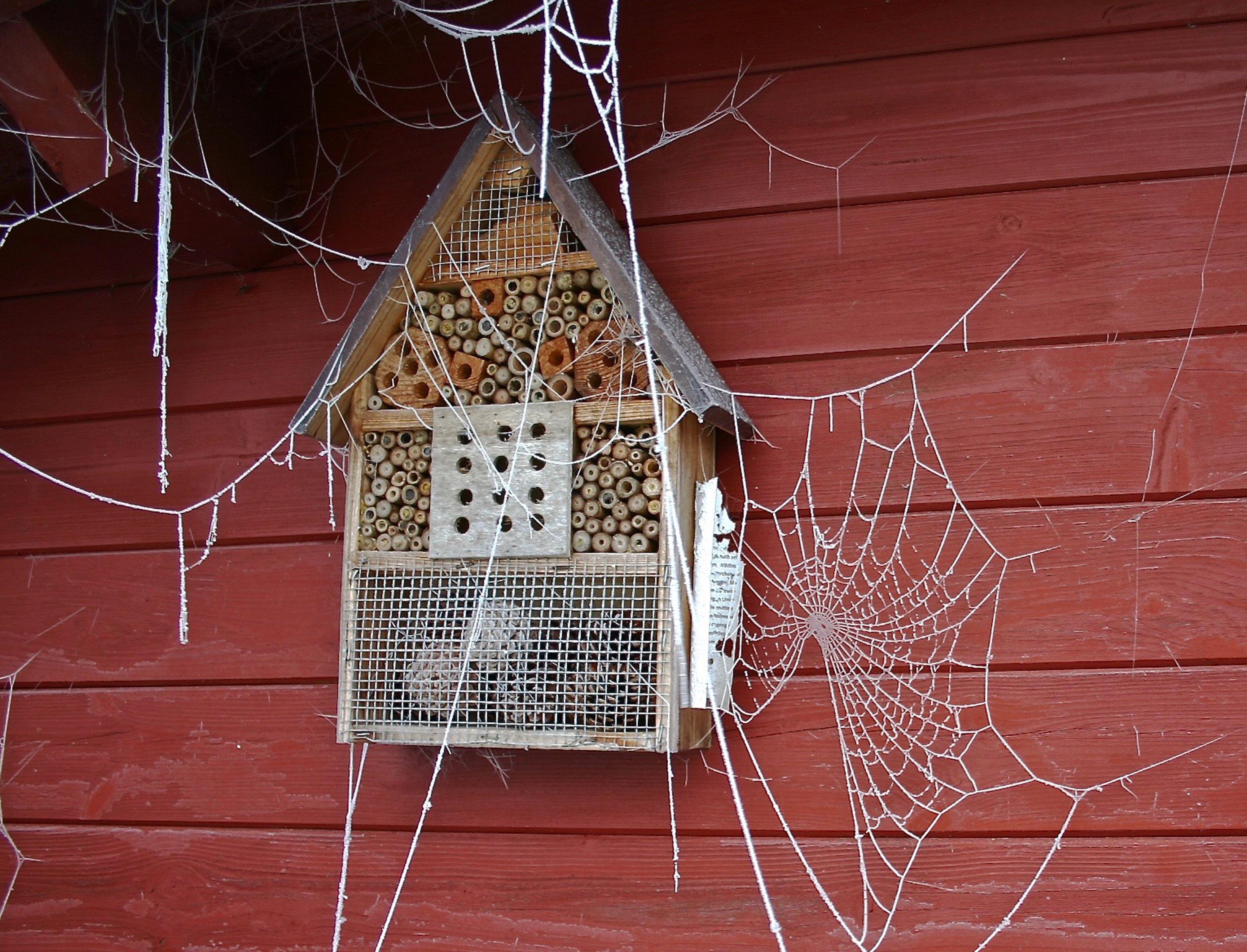 Fotos Gratis Fr O Invierno Roc O Casa Ventana Escarcha  ~ Webs De Decoraciã³n De Interiores