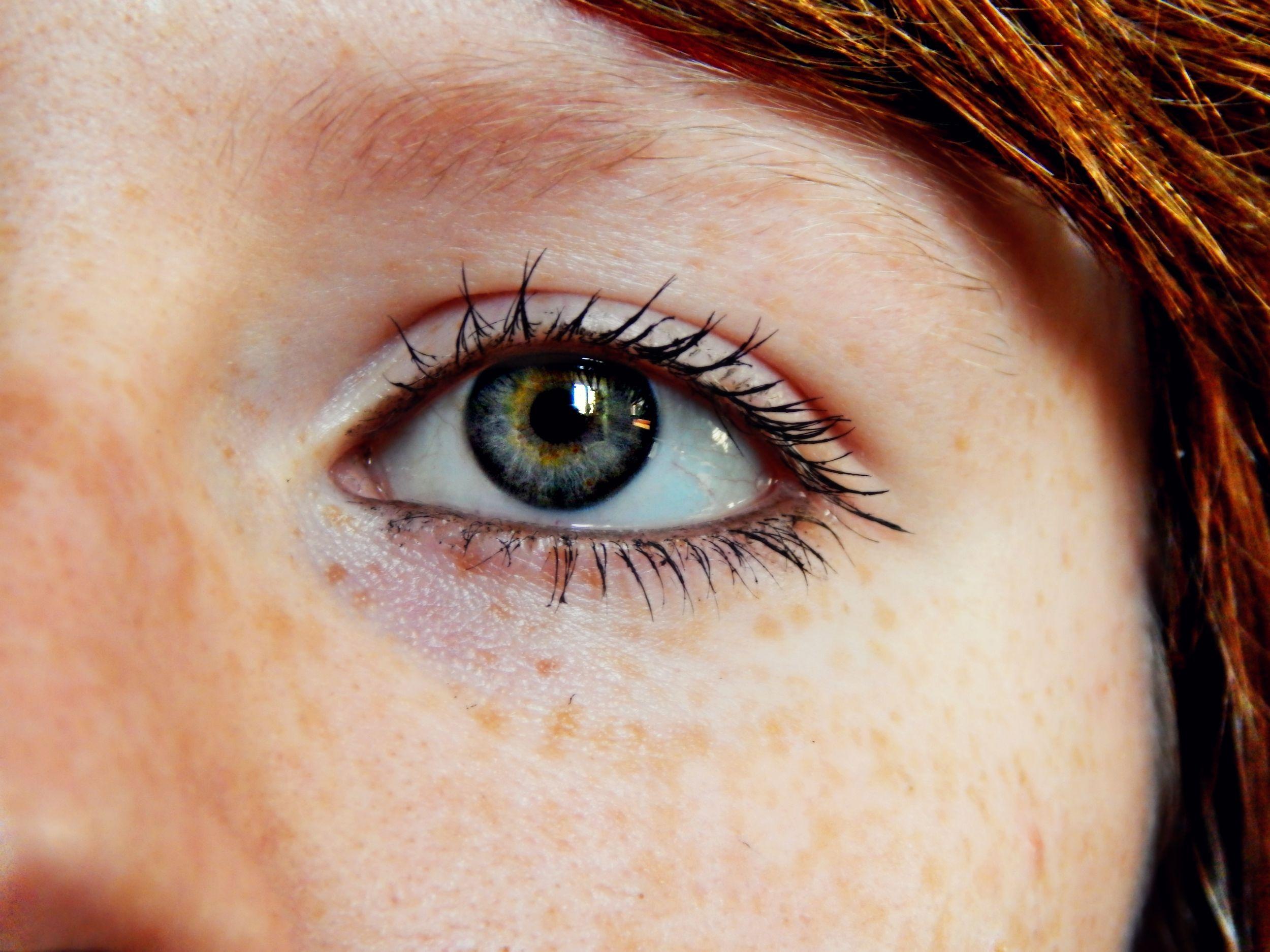 warna coklat biru alis bulu mata merapatkan tubuh manusia warna menghadapi hidung pipi mata kepala kulit