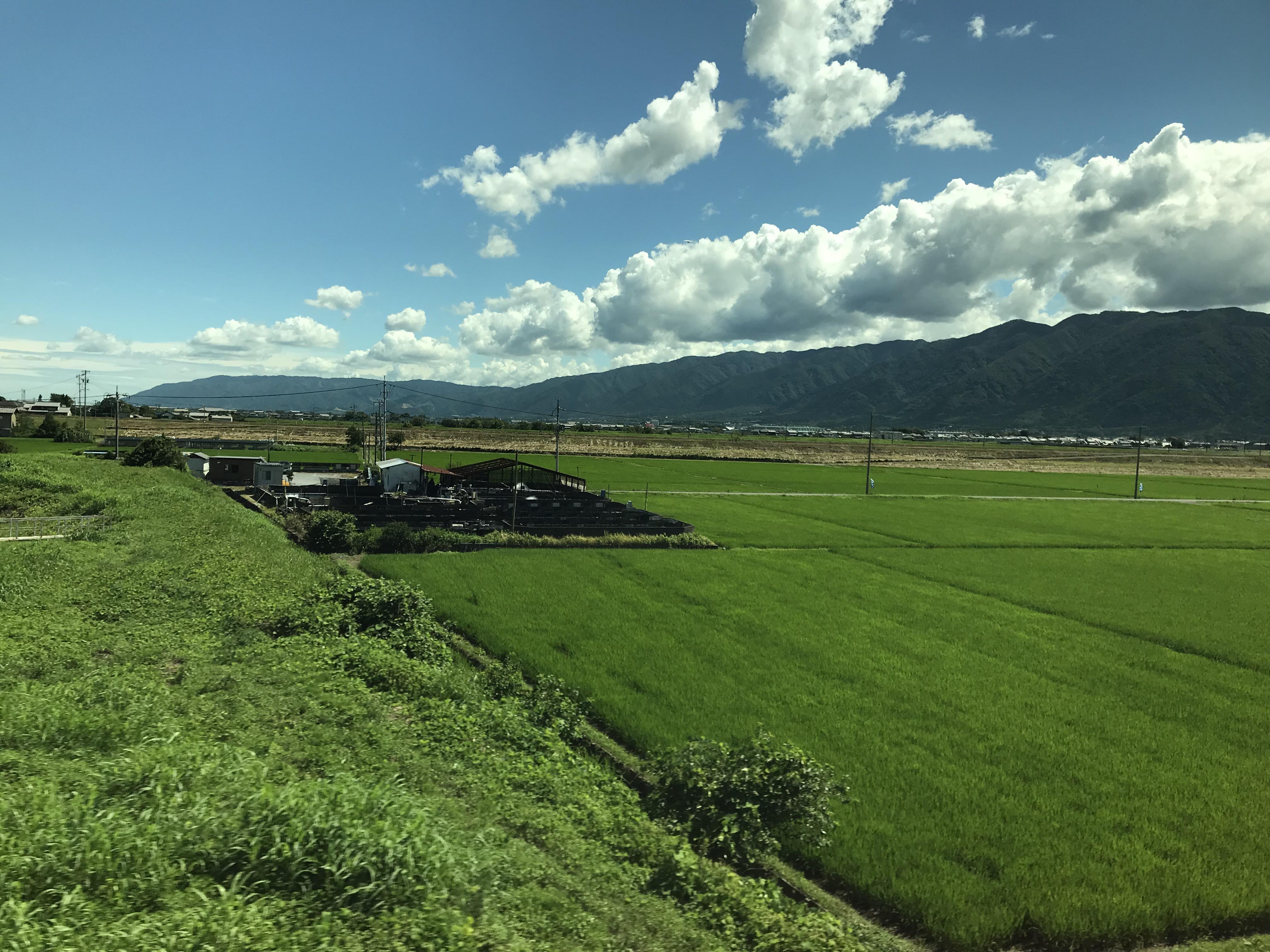 Gambar Jepang Sawah Hijau Padang Rumput Langit Pemandangan Alam Bidang Bentang Alam Pegunungan Polos Bukit Lingkungan Alami Dataran Tinggi Daerah Pedesaan Banyak Lahan Gurun Gunung Tanah Pertanian Keluarga Rumput Musim Semi
