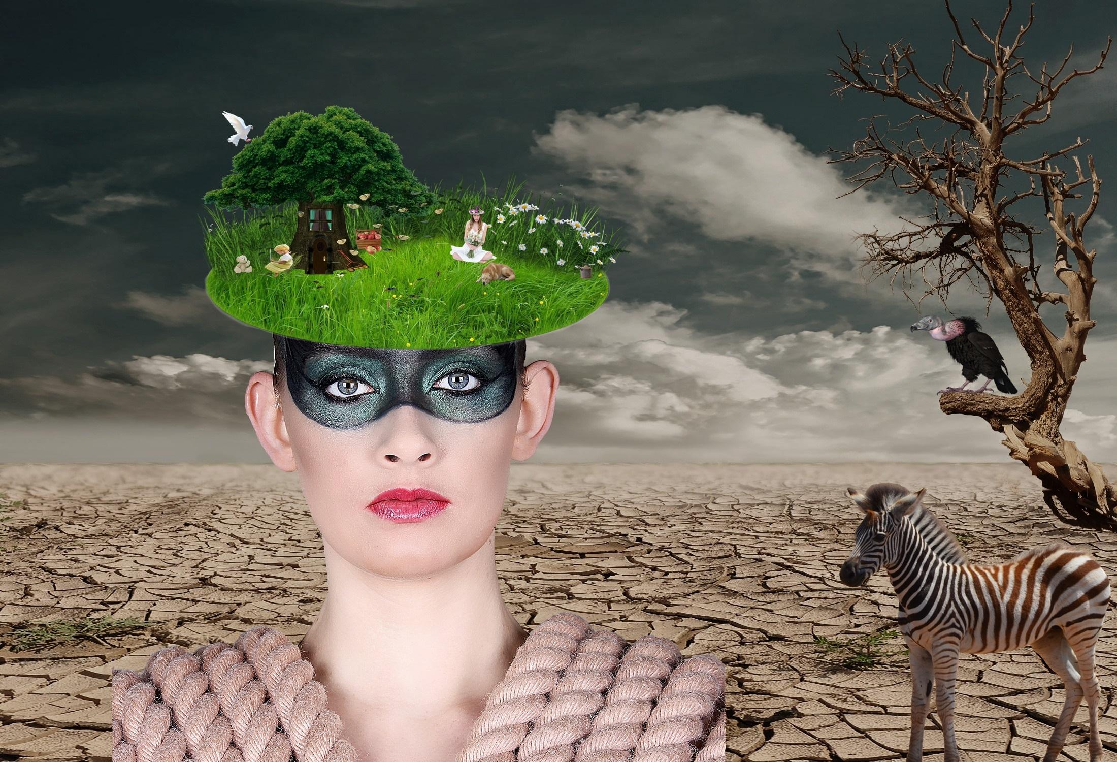 Fotos gratis : creativo, abstracto, mujer, prado, Desierto, flor ...