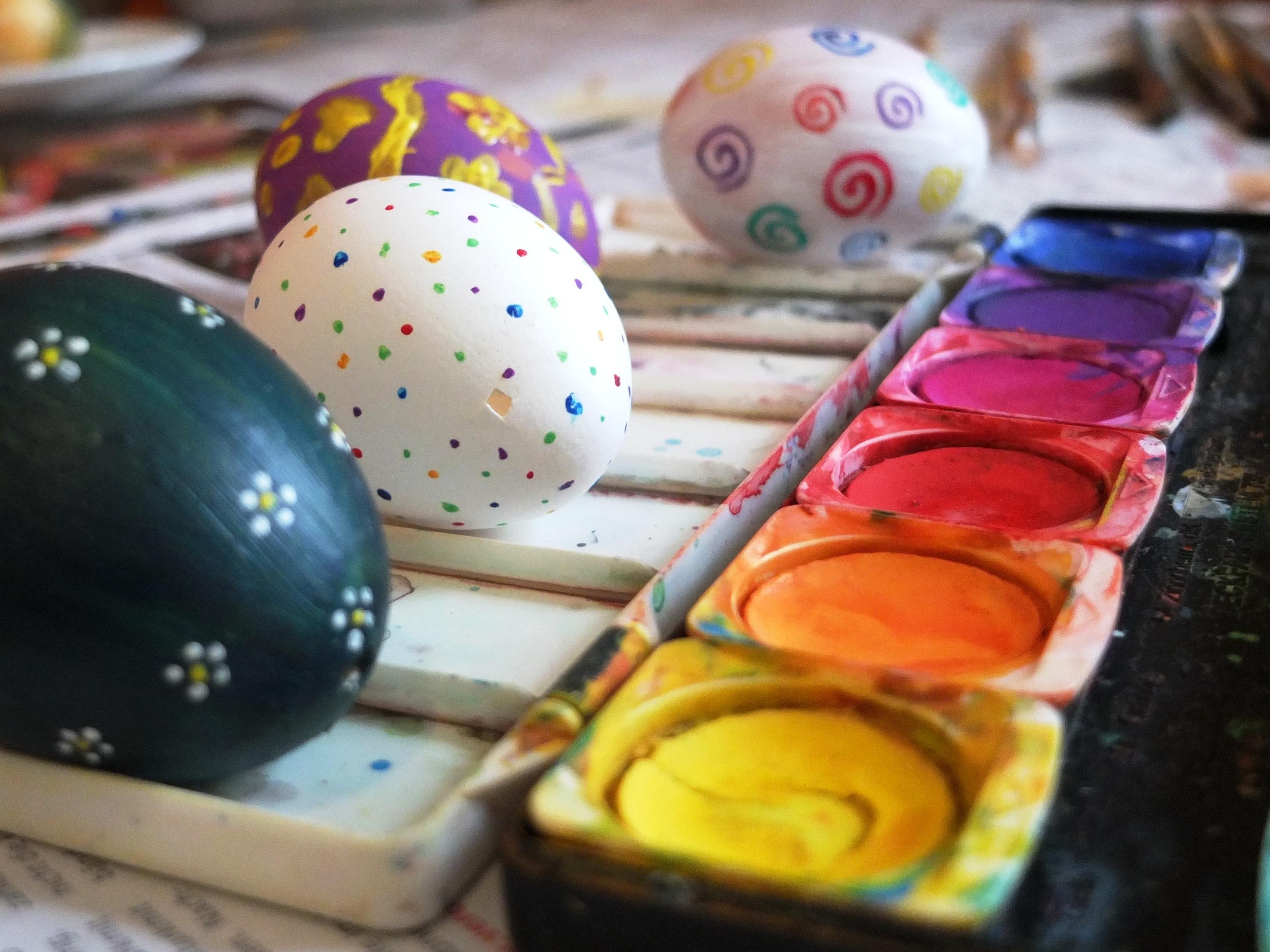 Fotoğraf Yaratıcı çiçek Gıda Renk Boya Renkli Yumurta