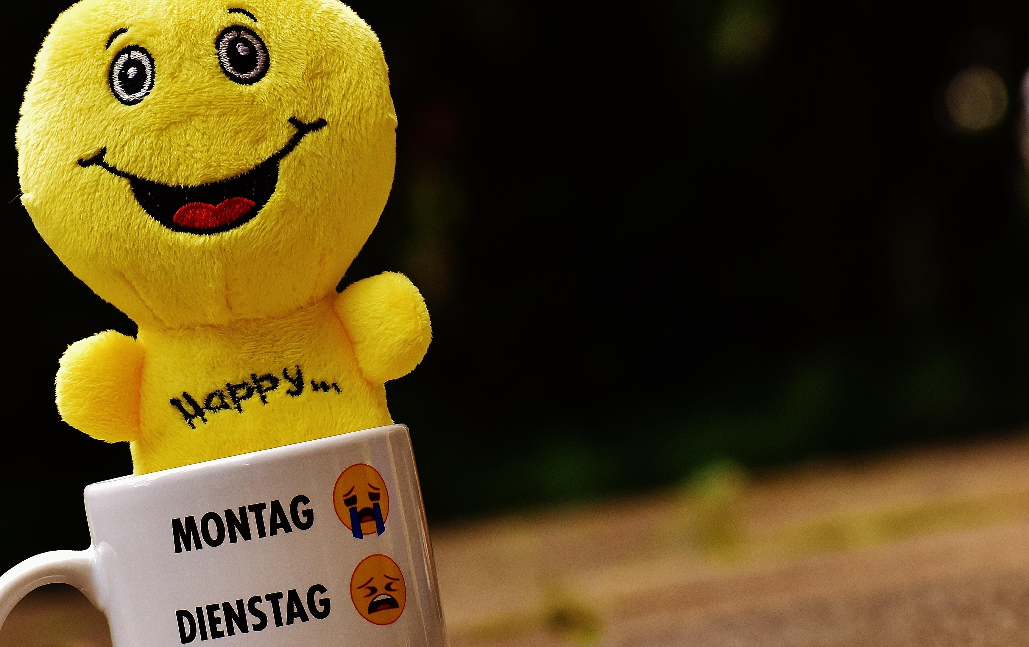 Smile Toys And Joys : Banco de imagens copo cor amarelo brinquedo sorrir