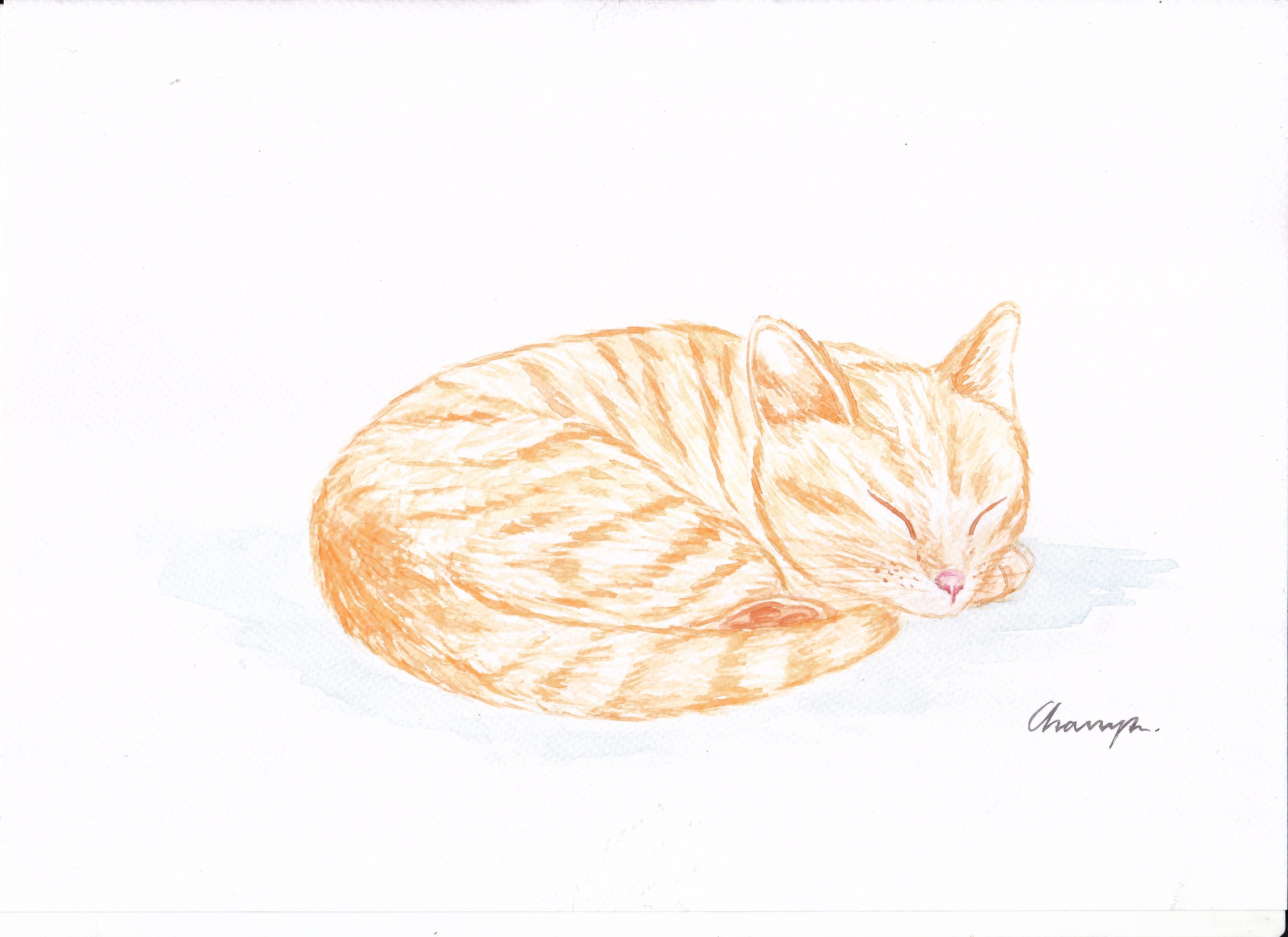 Free Cute Cat Produce Human Body Sketch