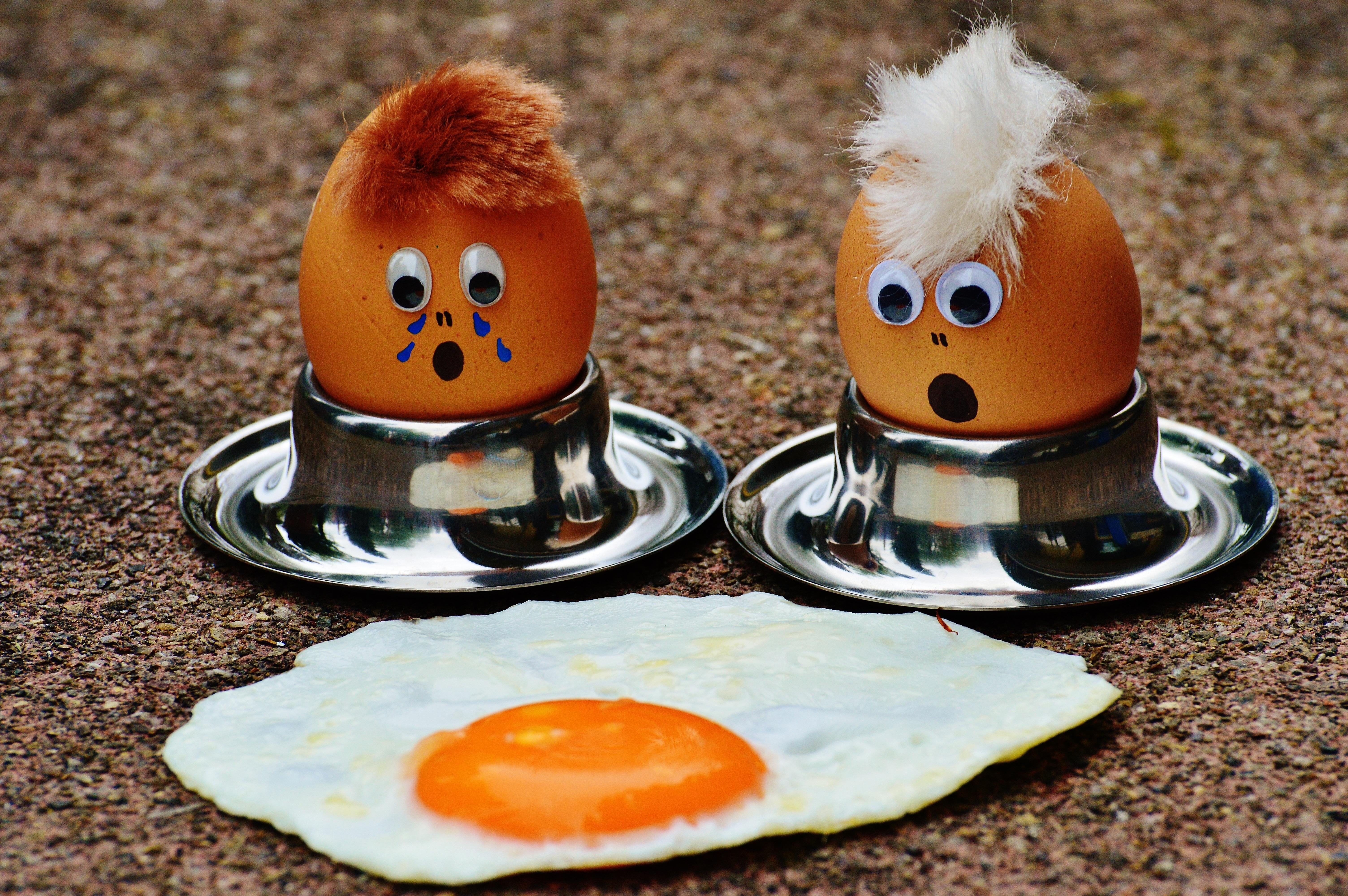 Смешные картинки яичницы