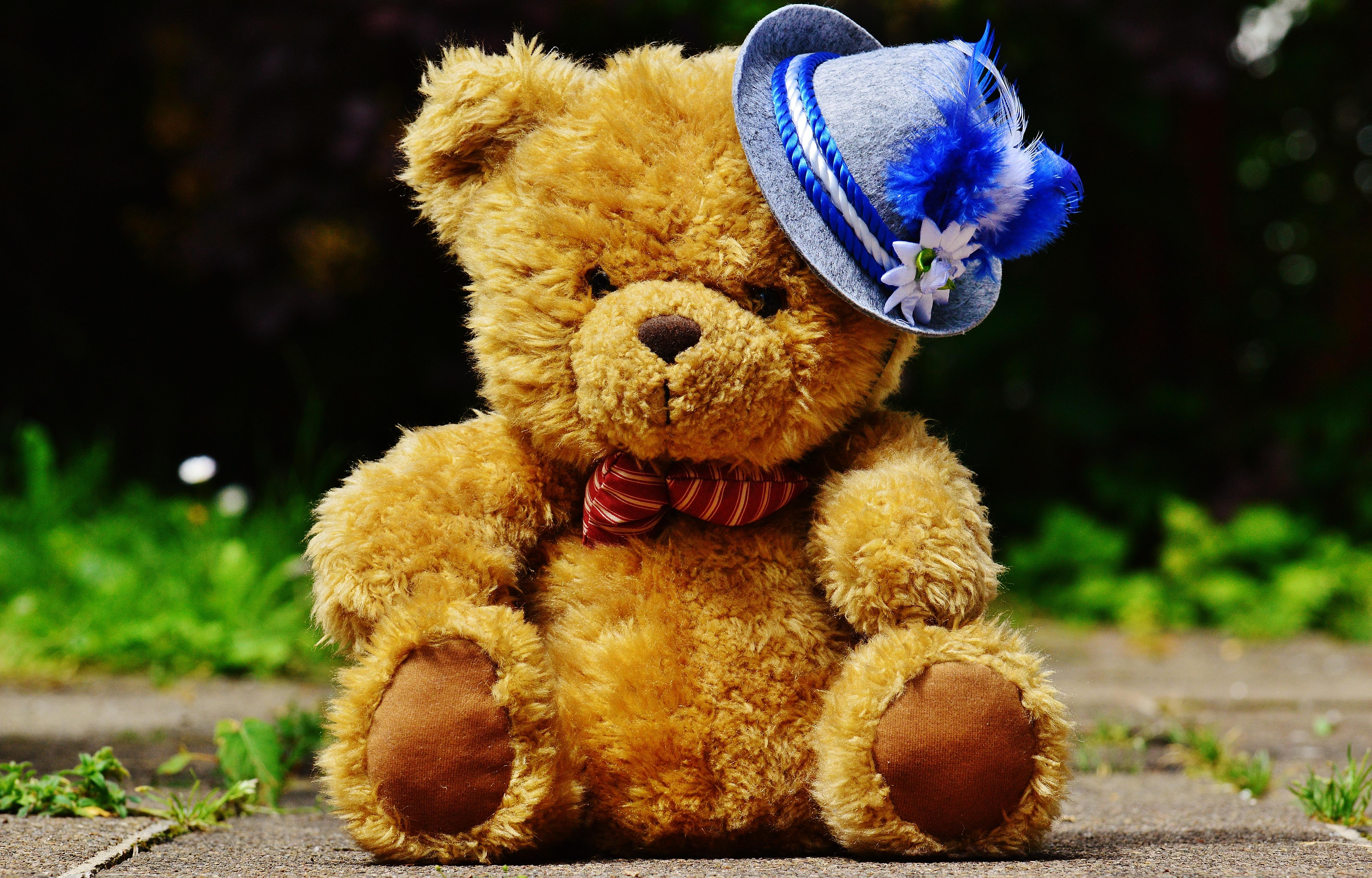 Kostenlose foto : niedlich, Hut, Spielzeug, Bier, Teddybär, Textil ...