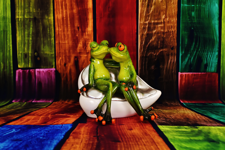 Gambar Imut Cinta Hijau Warna Ciuman Pasangan Katak