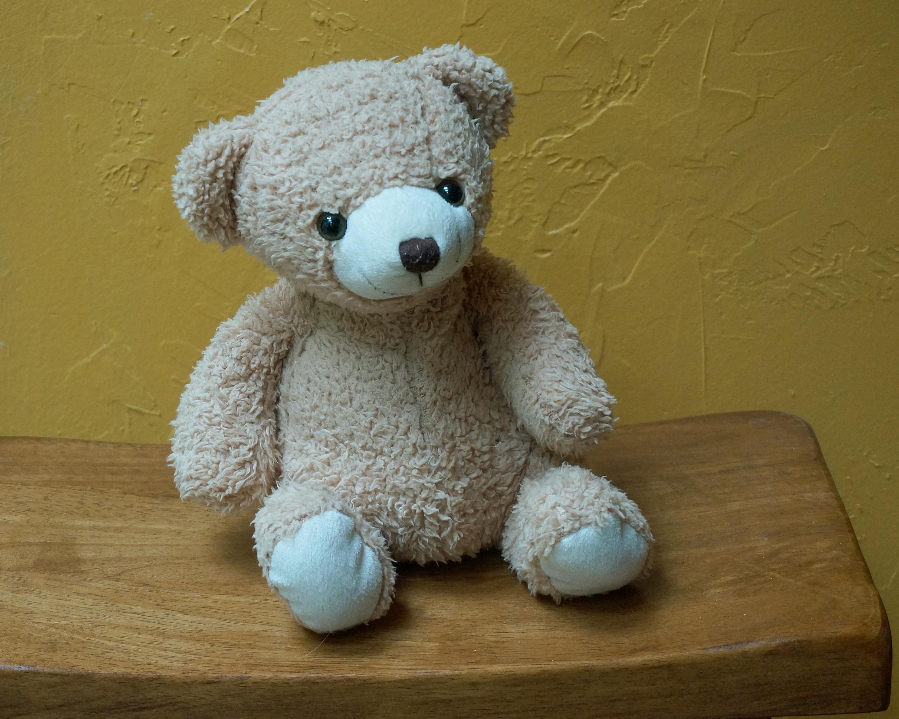 Fotos gratis : linda, juguete, oso de peluche, tejer, textil, art ...