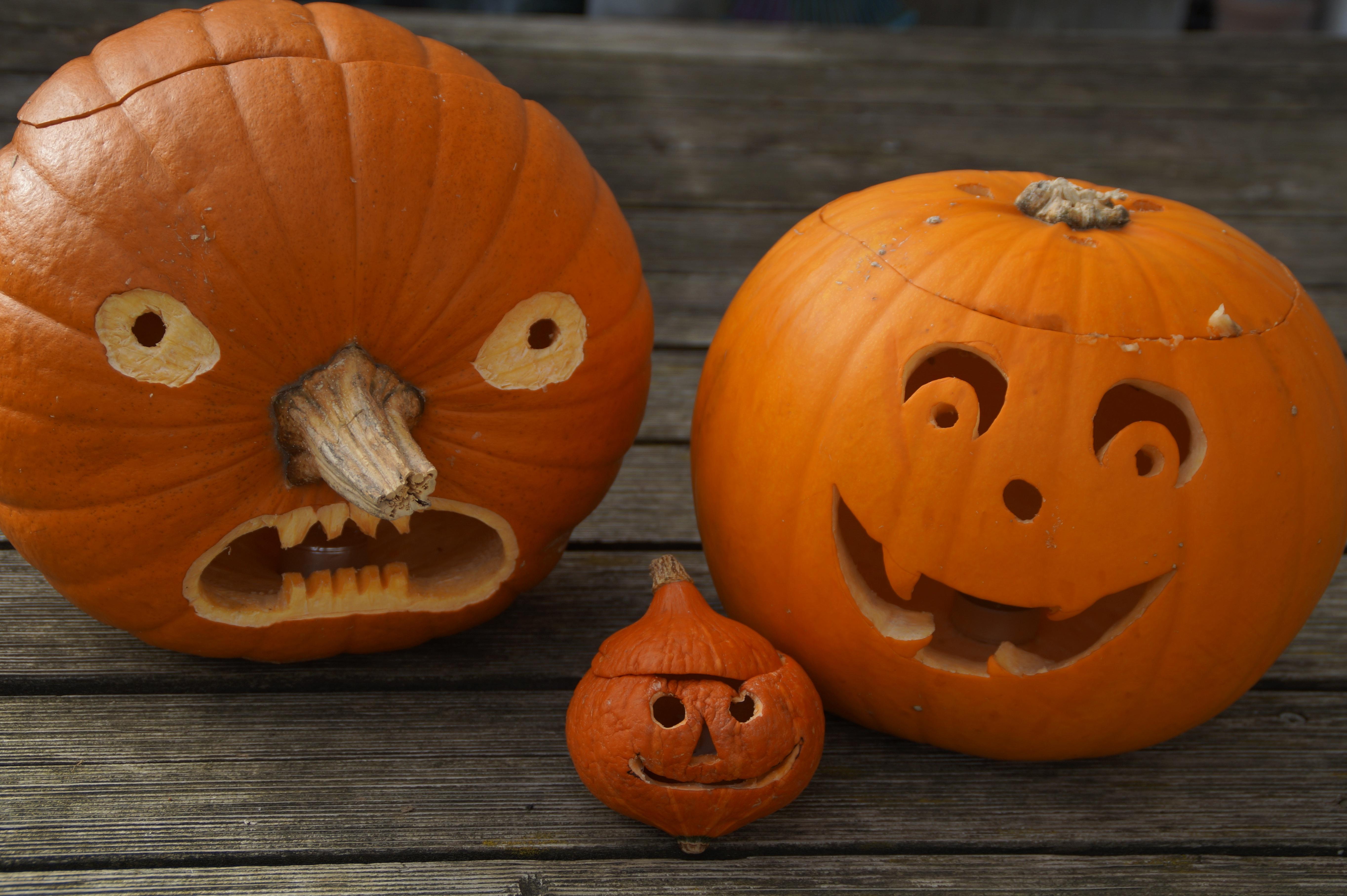 Free images orange halloween holiday child jack o - Hacer calabaza halloween ...