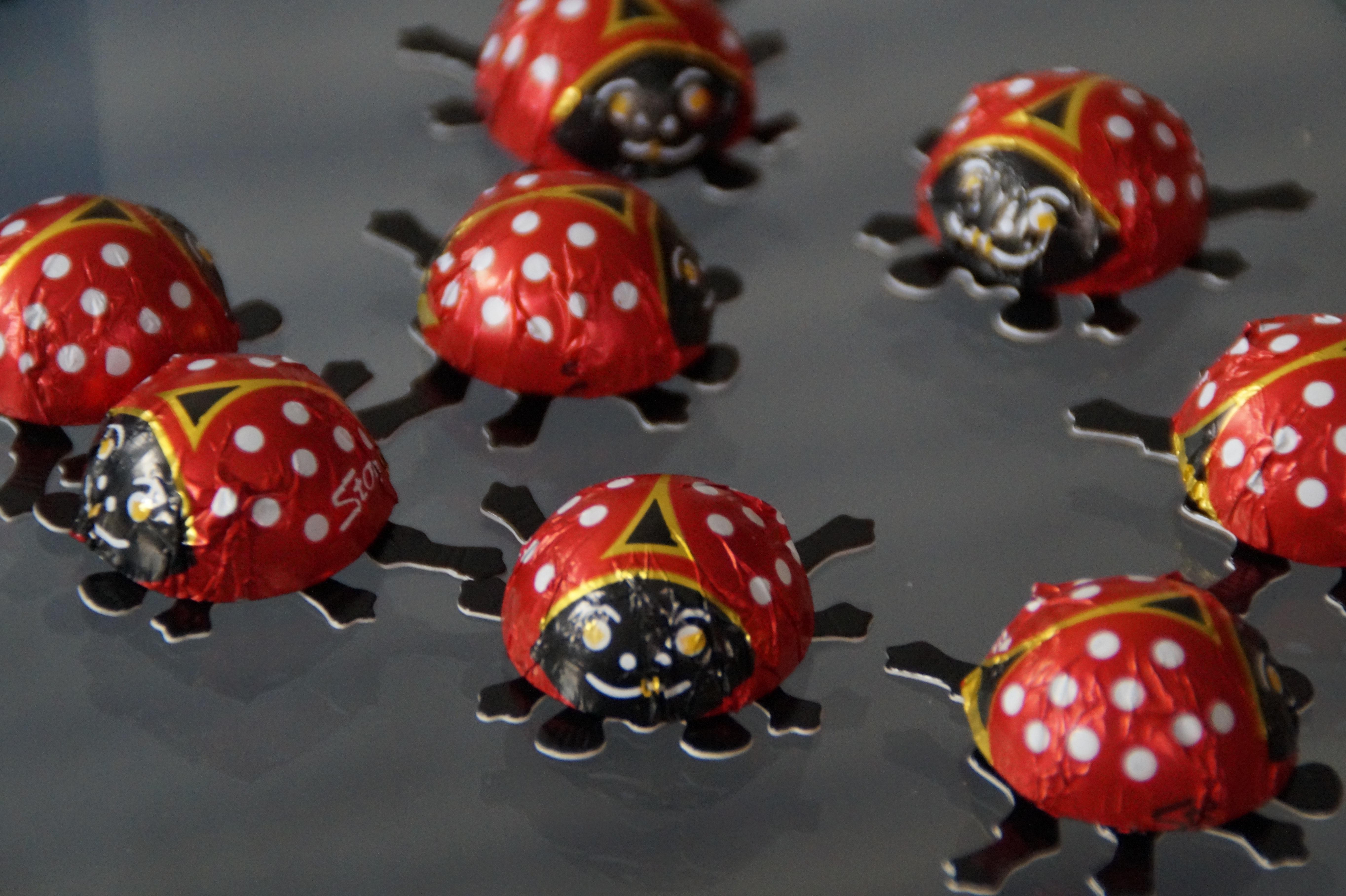 Fotos gratis : decoración, patrón, rojo, símbolo, insecto, juguete ...