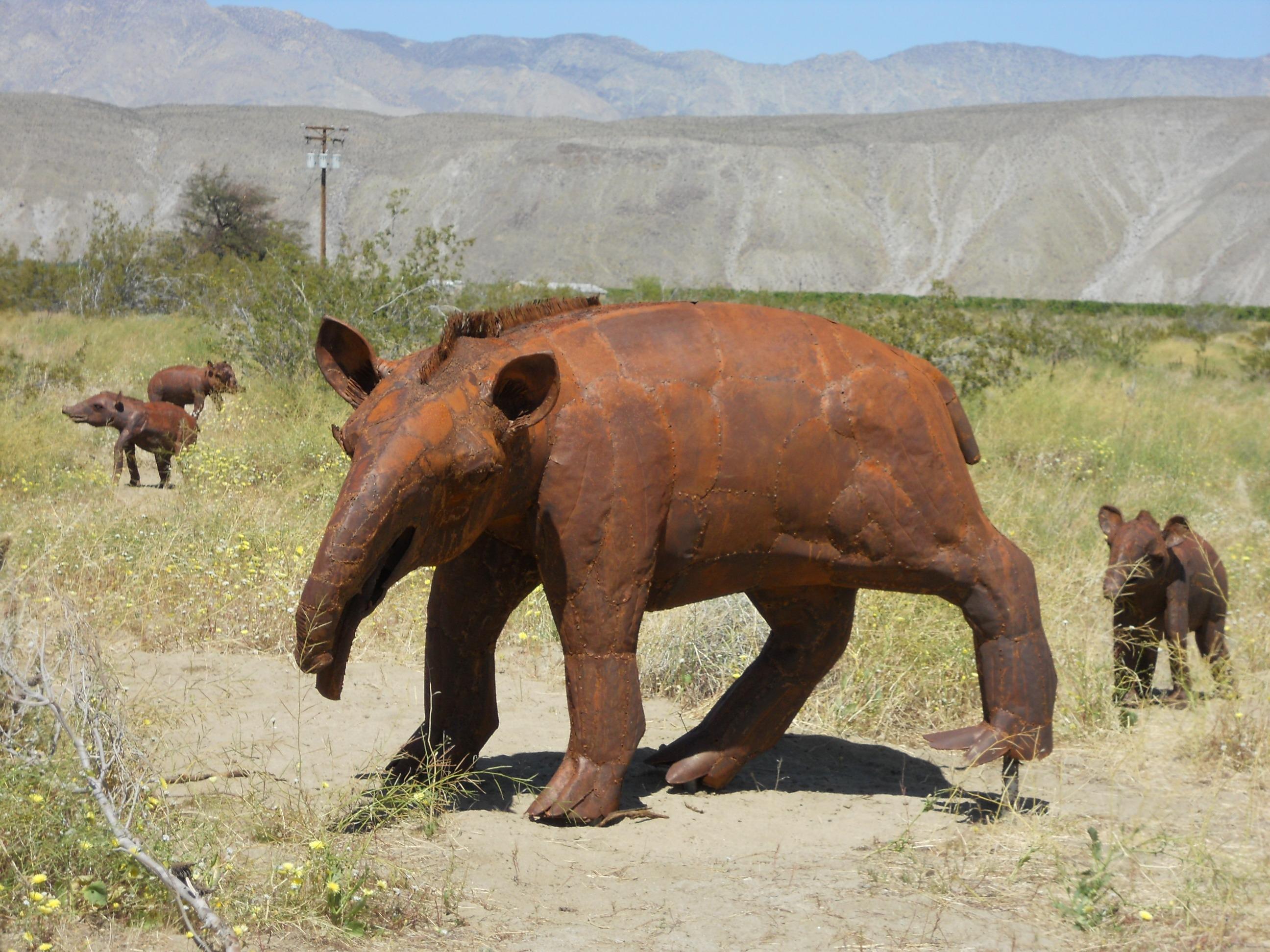 Free Images : desert, adventure, animal, wildlife, herd ...