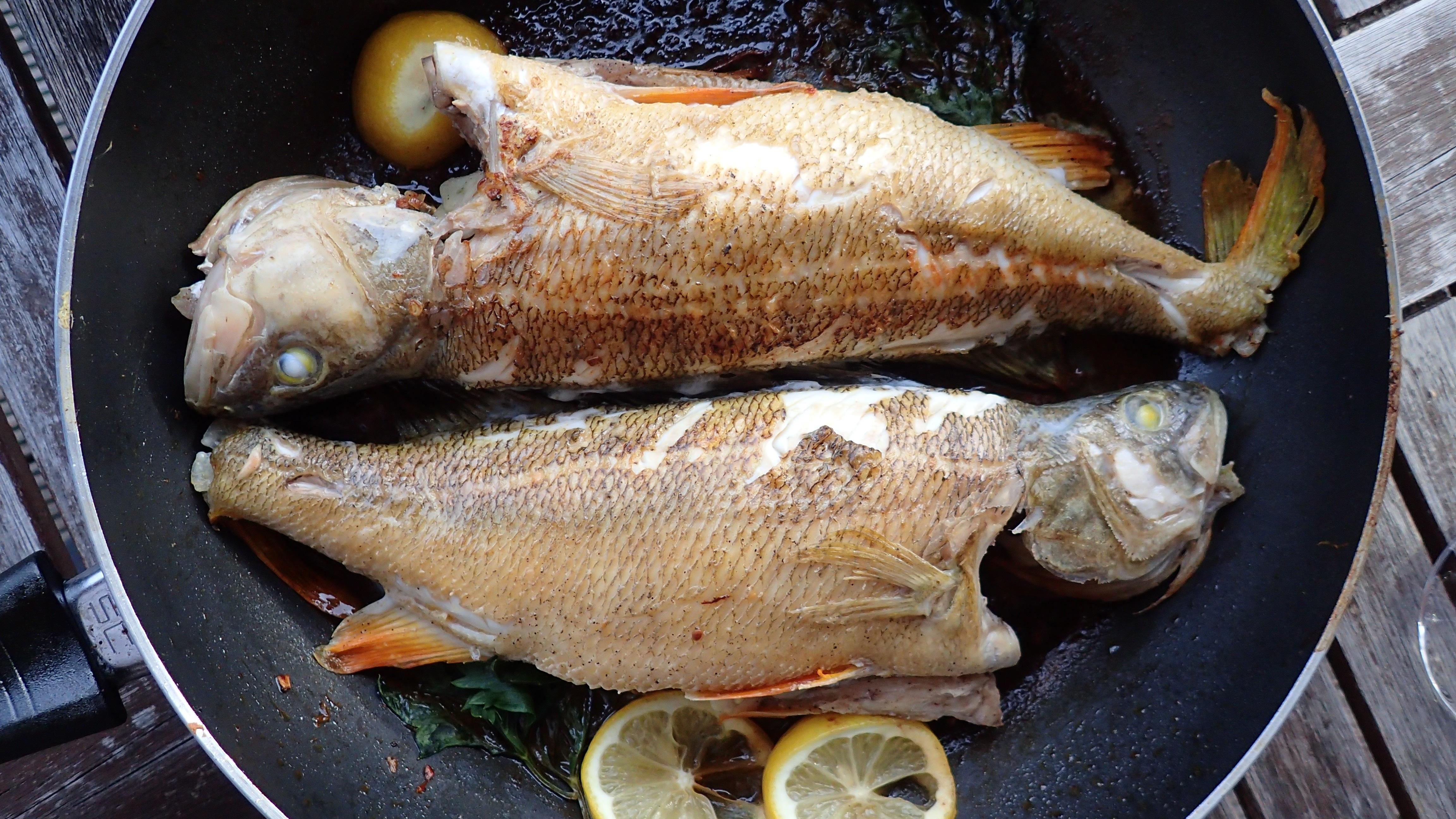 картинка рыбка на сковороде помощью