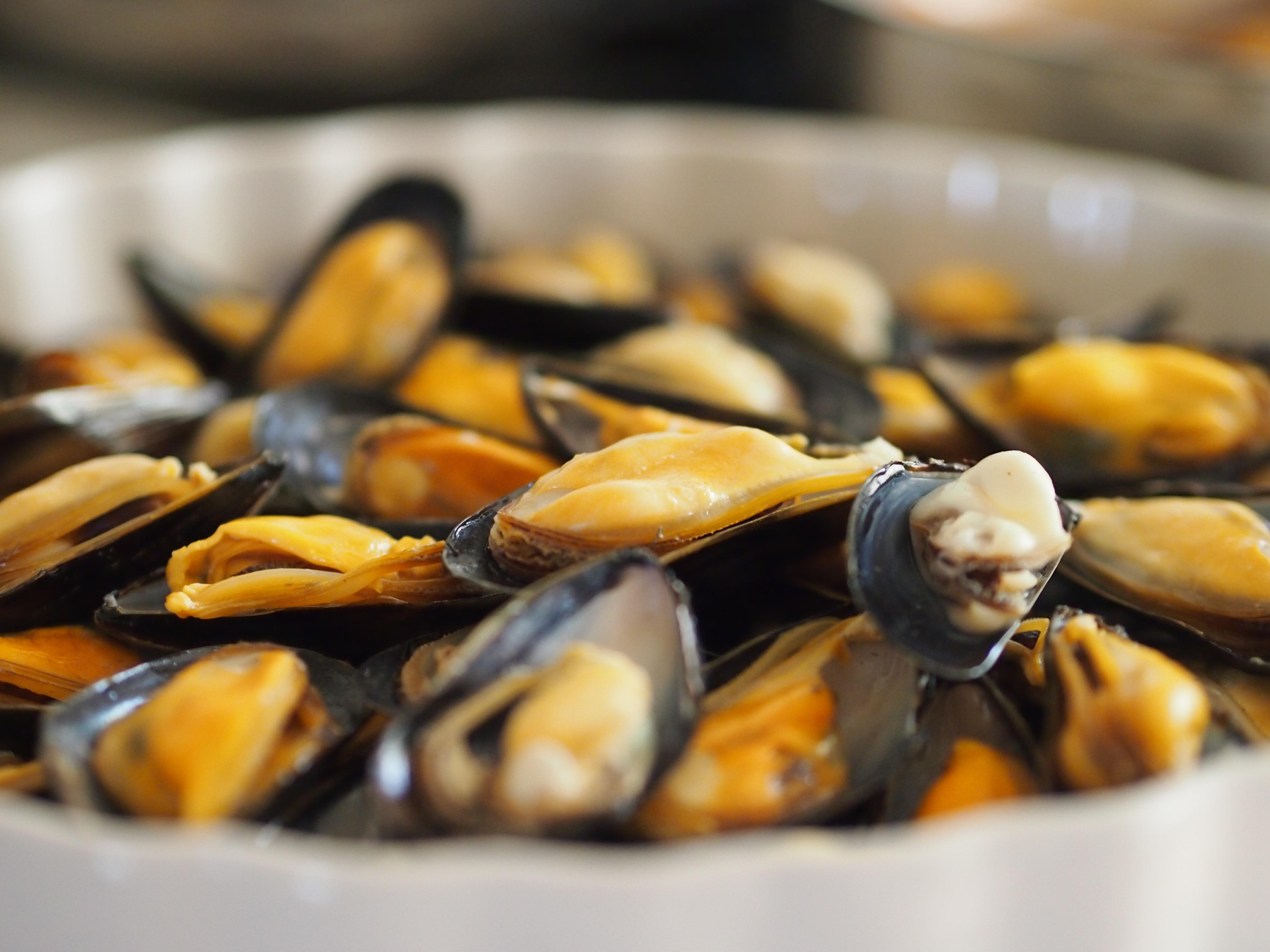 Fotos gratis plato comida produce mariscos cocina for Cocinar ostras