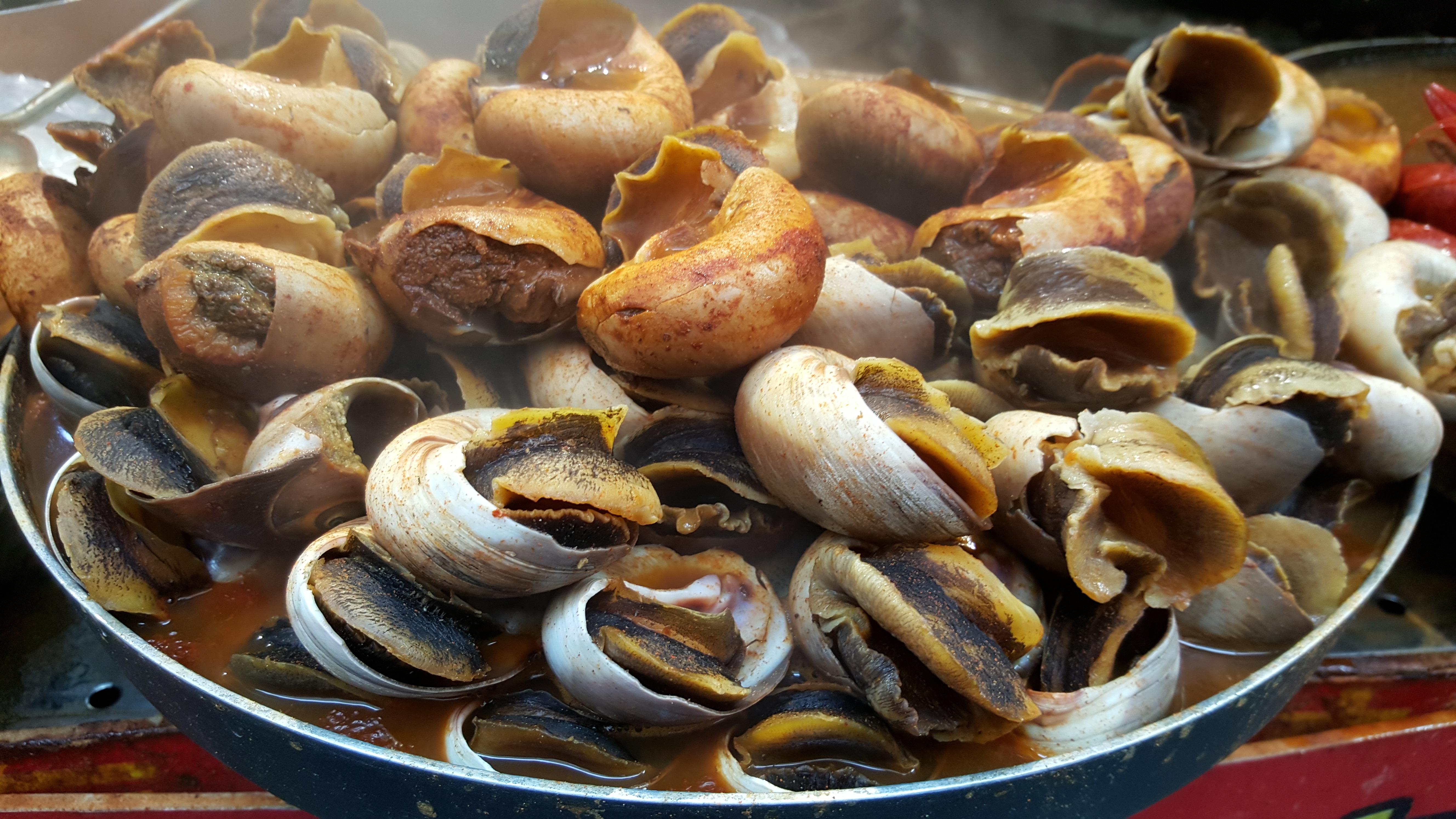 Gambar Hidangan Makanan Laut Masakan Invertebrata Remis Jalan
