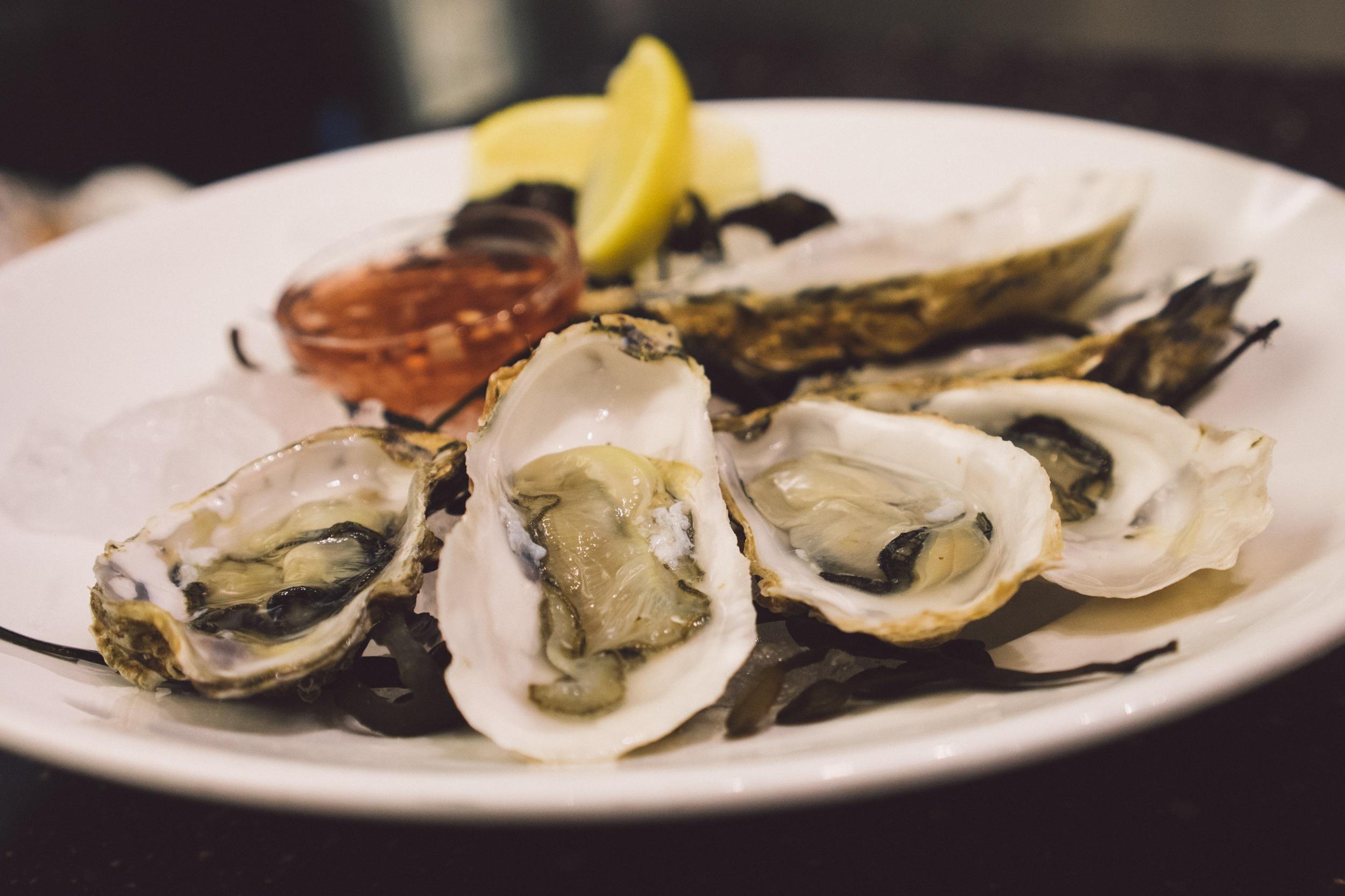 Free fotobanka j dlo plody mo e ryba gurm n kuchyn for Public fish and oyster