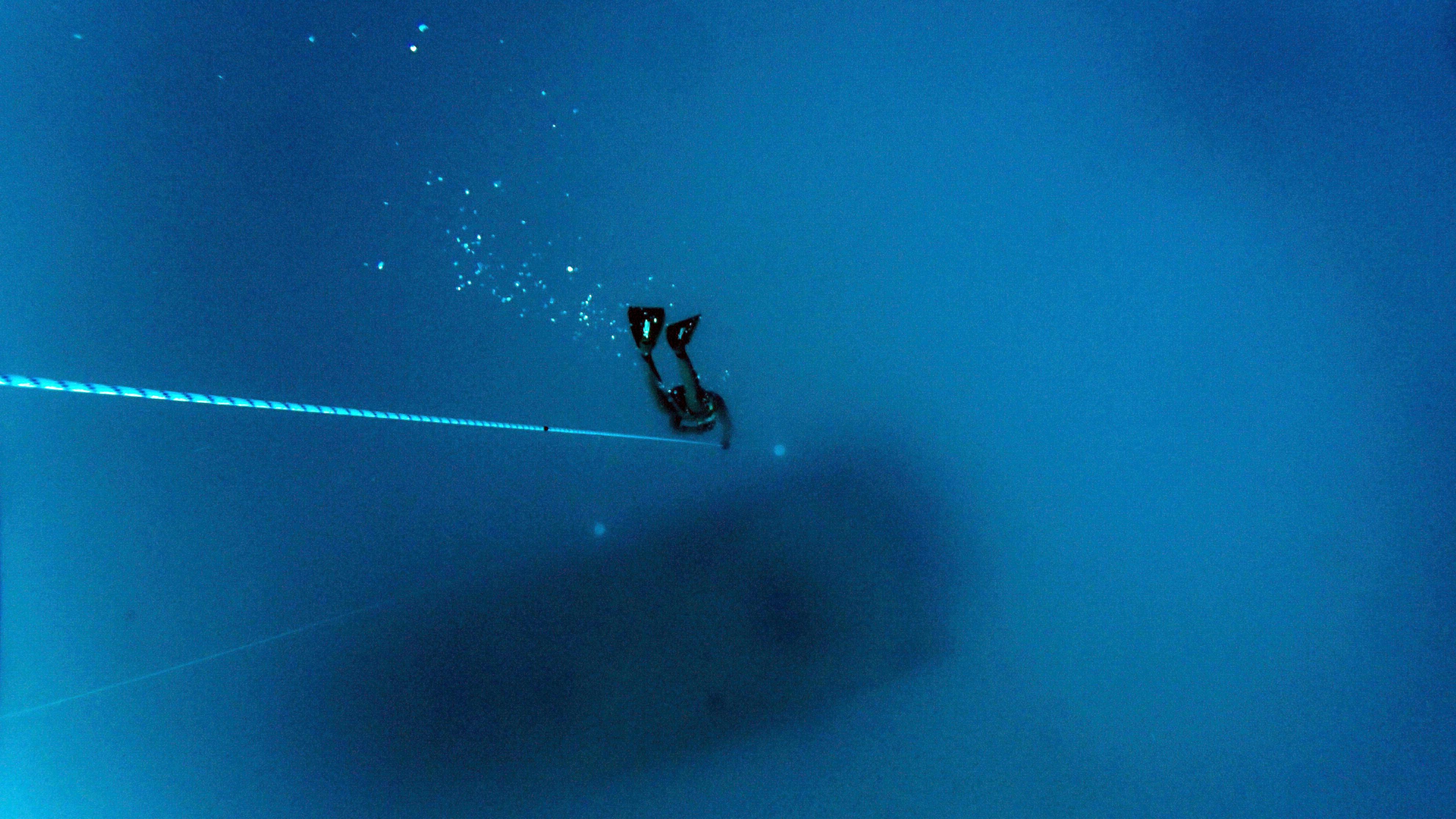 Images Gratuites Sous Marin Bleu Sport Extrême Plongée