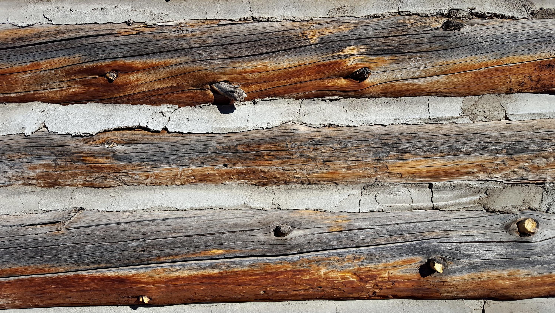Kostenlose foto : Treibholz, Baum, Ast, die Architektur, Holz ...