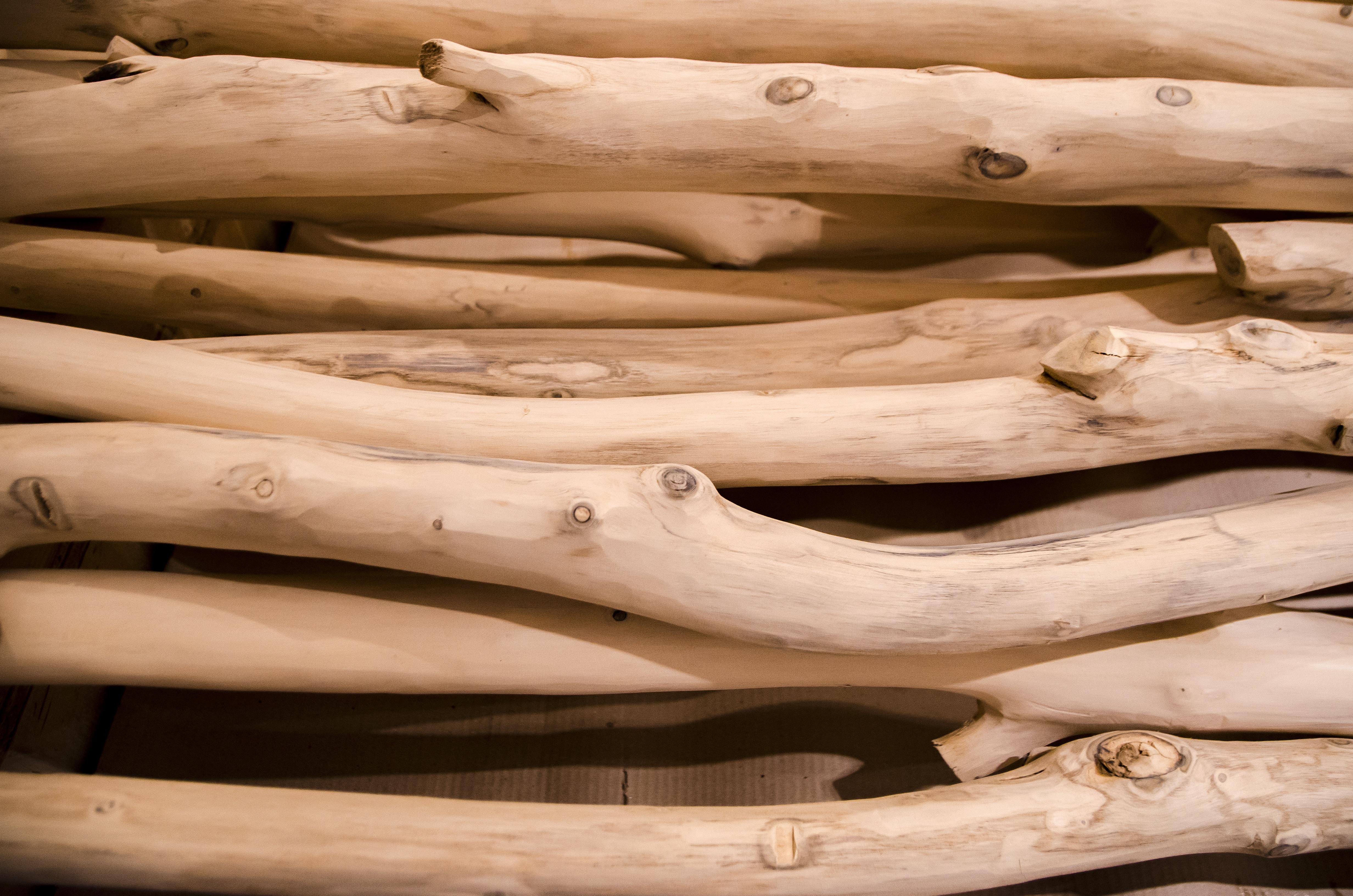 Images gratuites bois flott arbre branche tronc for Branche bois flotte blanc