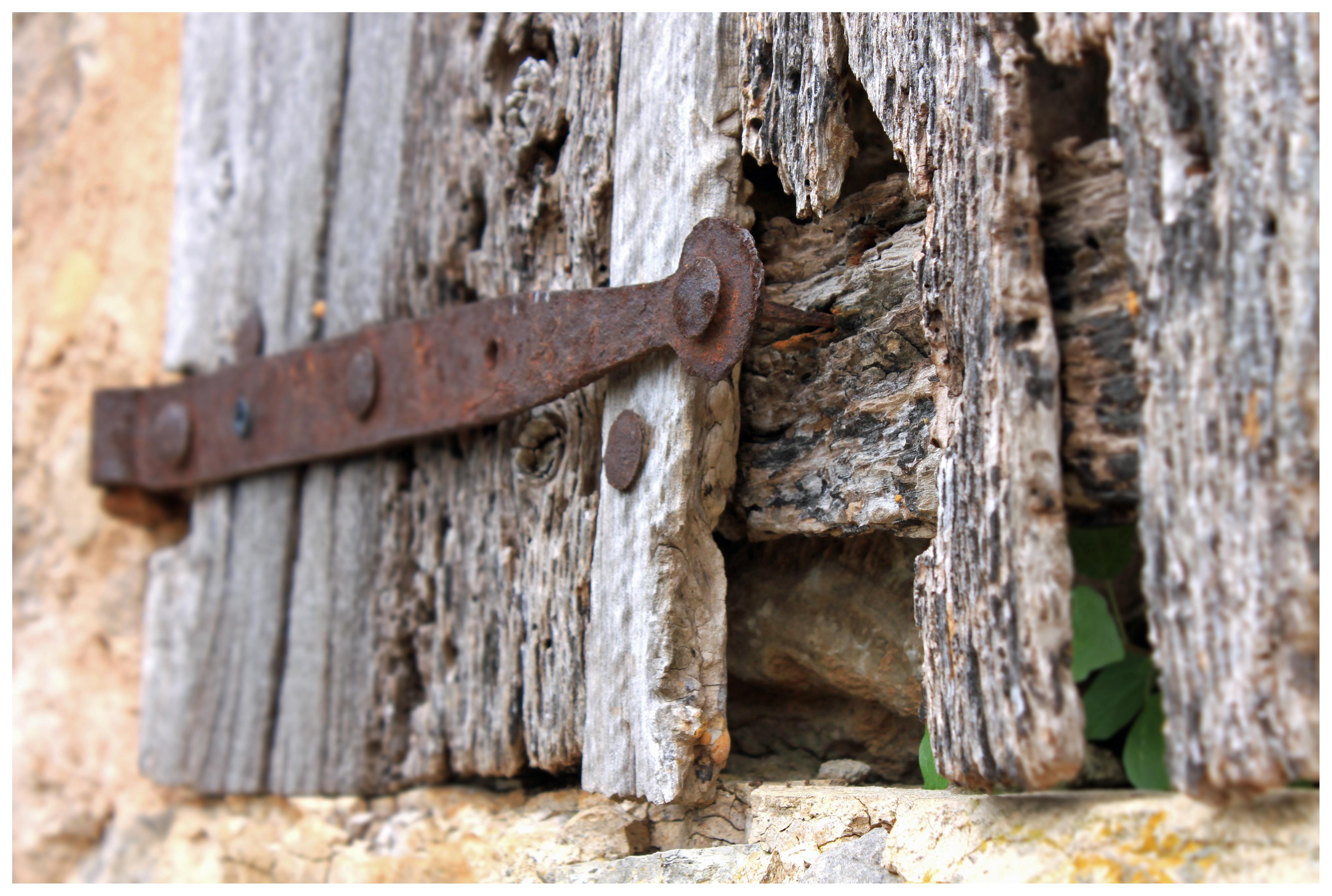 Images Gratuites : bois flotté, arbre, tronc, vieux, mur, métal ...