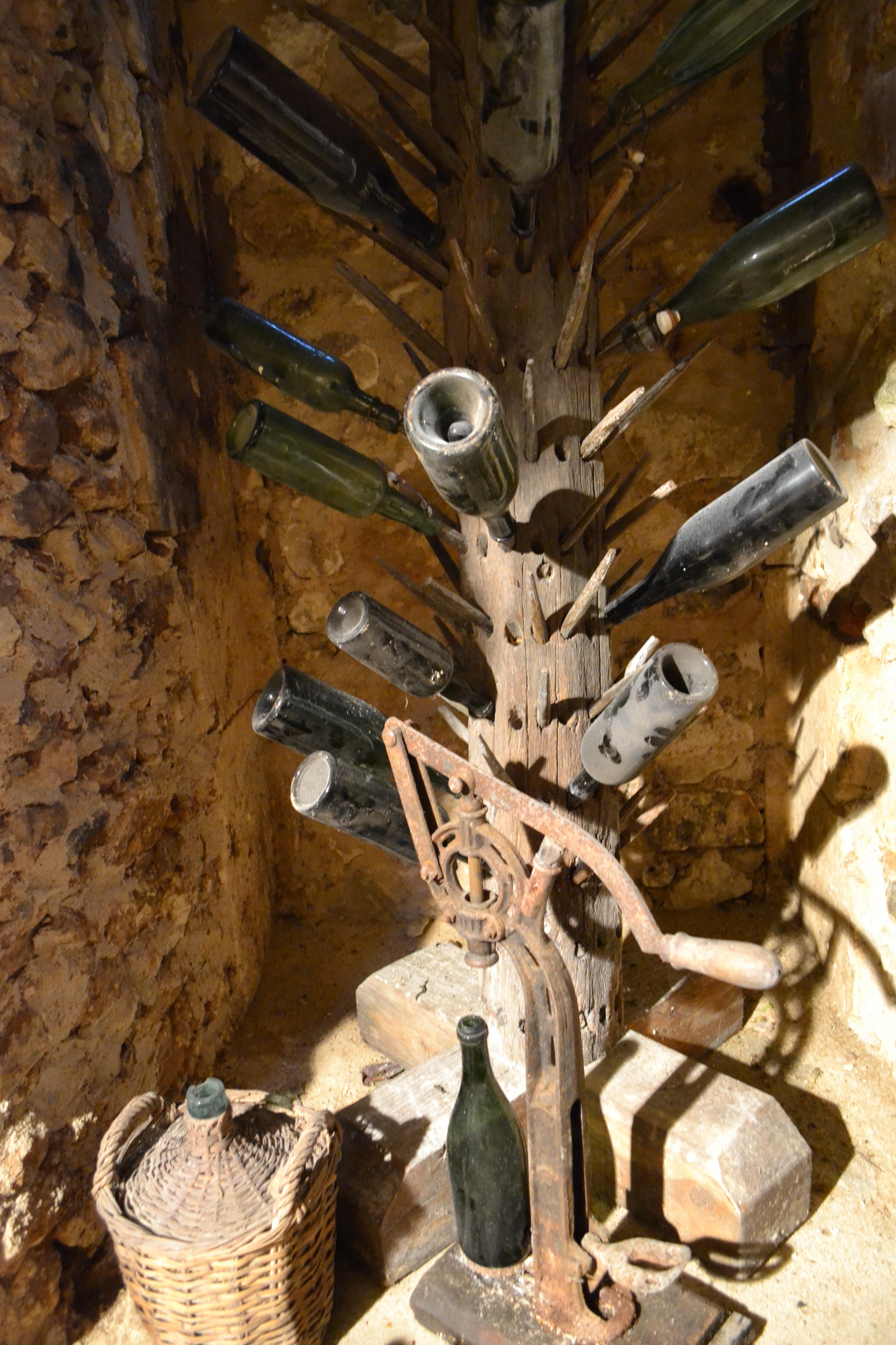 Images Gratuites Bois Flotté Arbre Du Vin France La Grotte