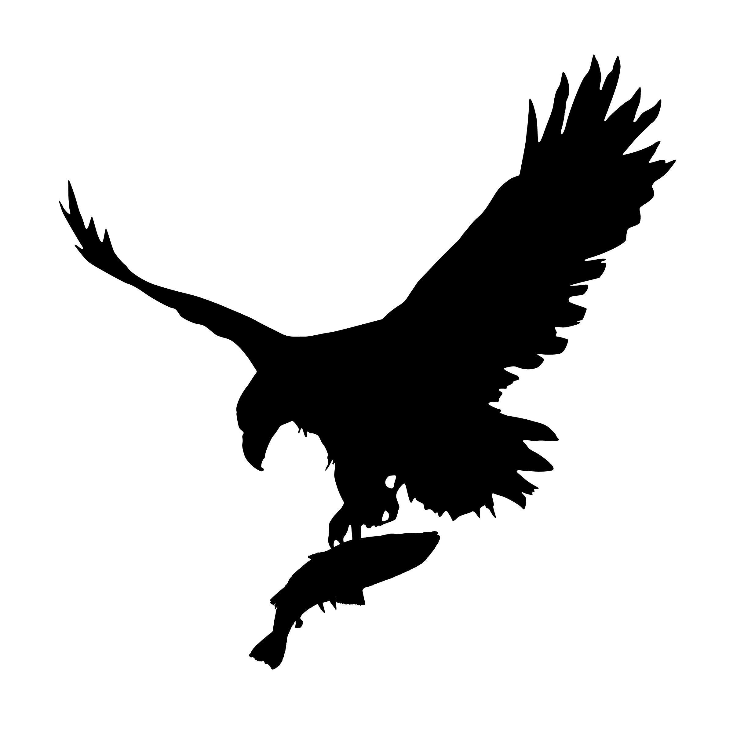 Gambar Burung Rajawali Memegang Margasatwa Langit