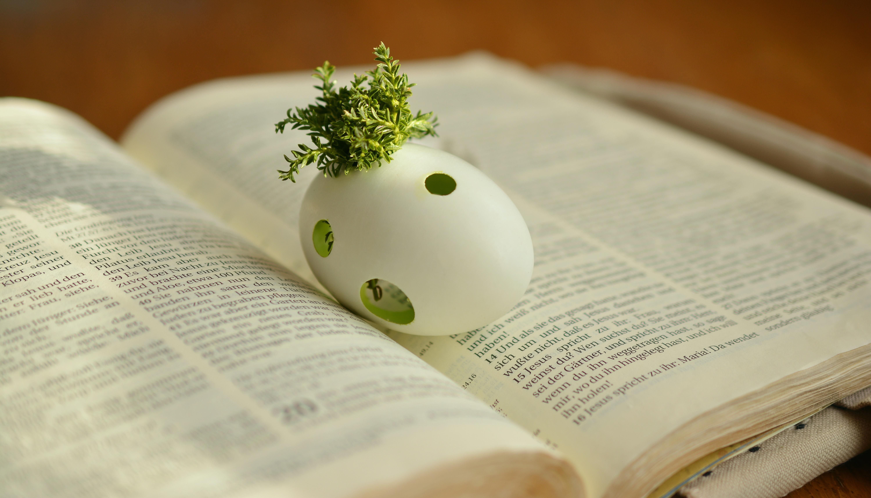 Kostenlos ostern christliche bilder ᐅ Christliche