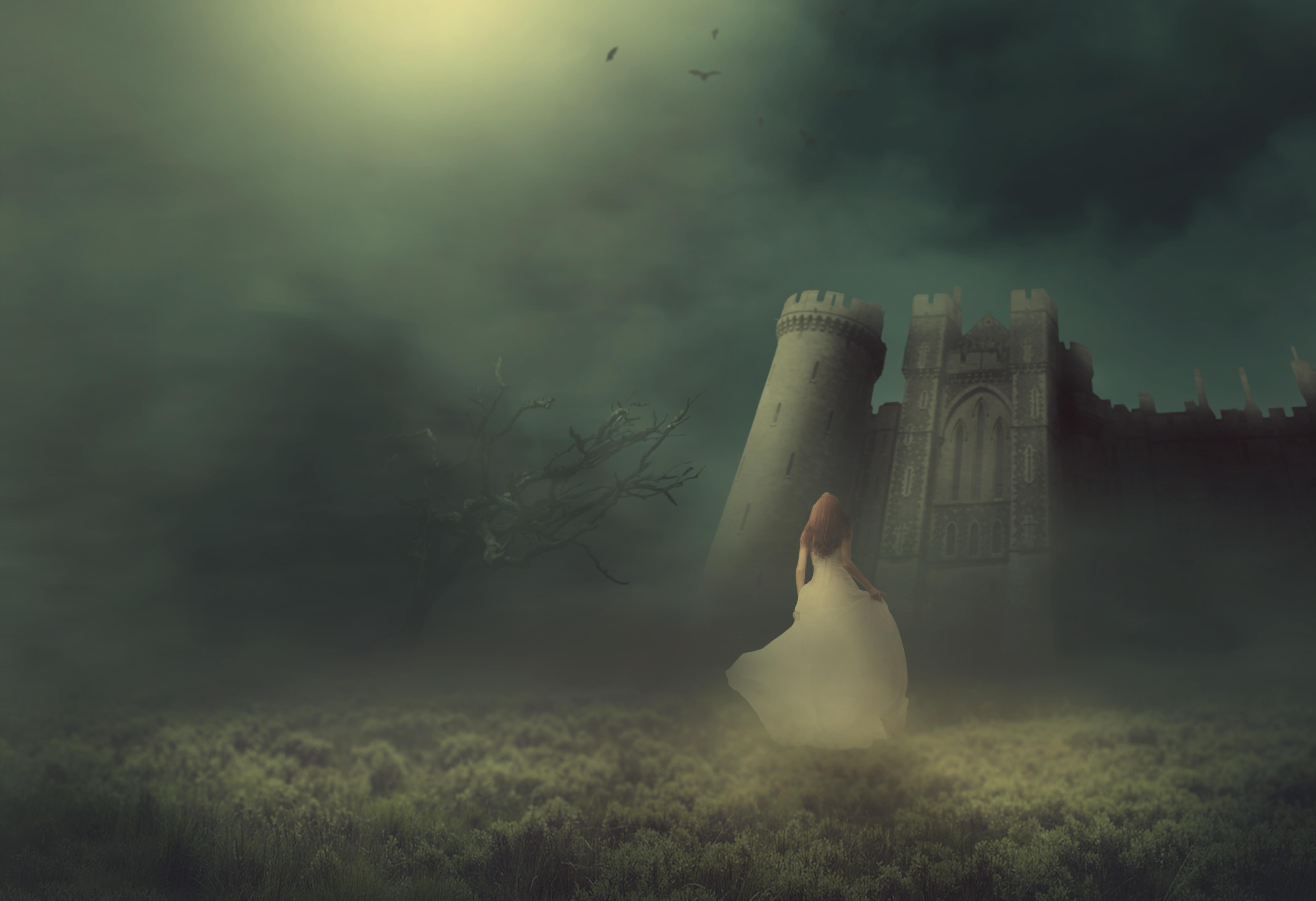 картинки в сказке обман призрачный остров скрылся в туман