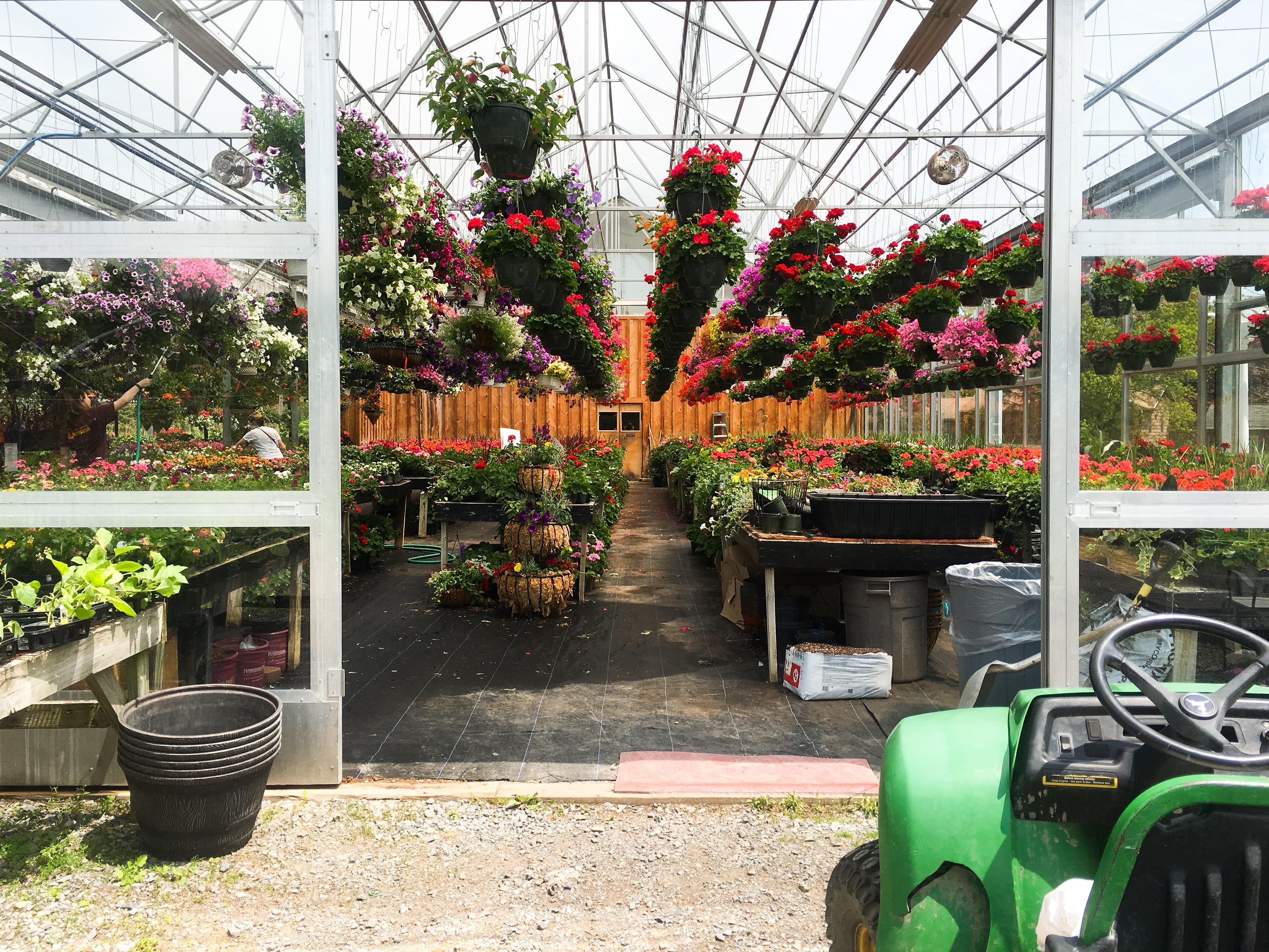 Free farm flower tool backyard botany garden