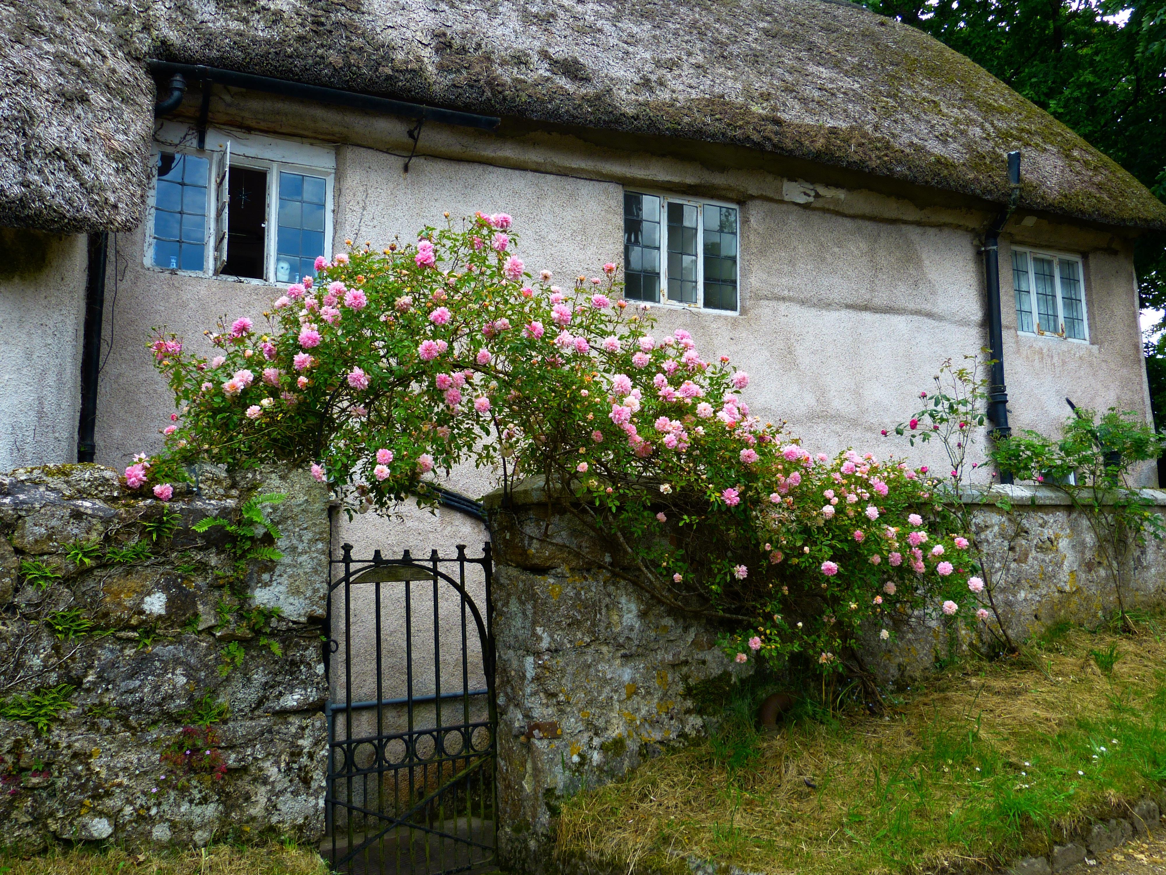 Gratis afbeeldingen : farm huis bloem gebouw oud huis dorp
