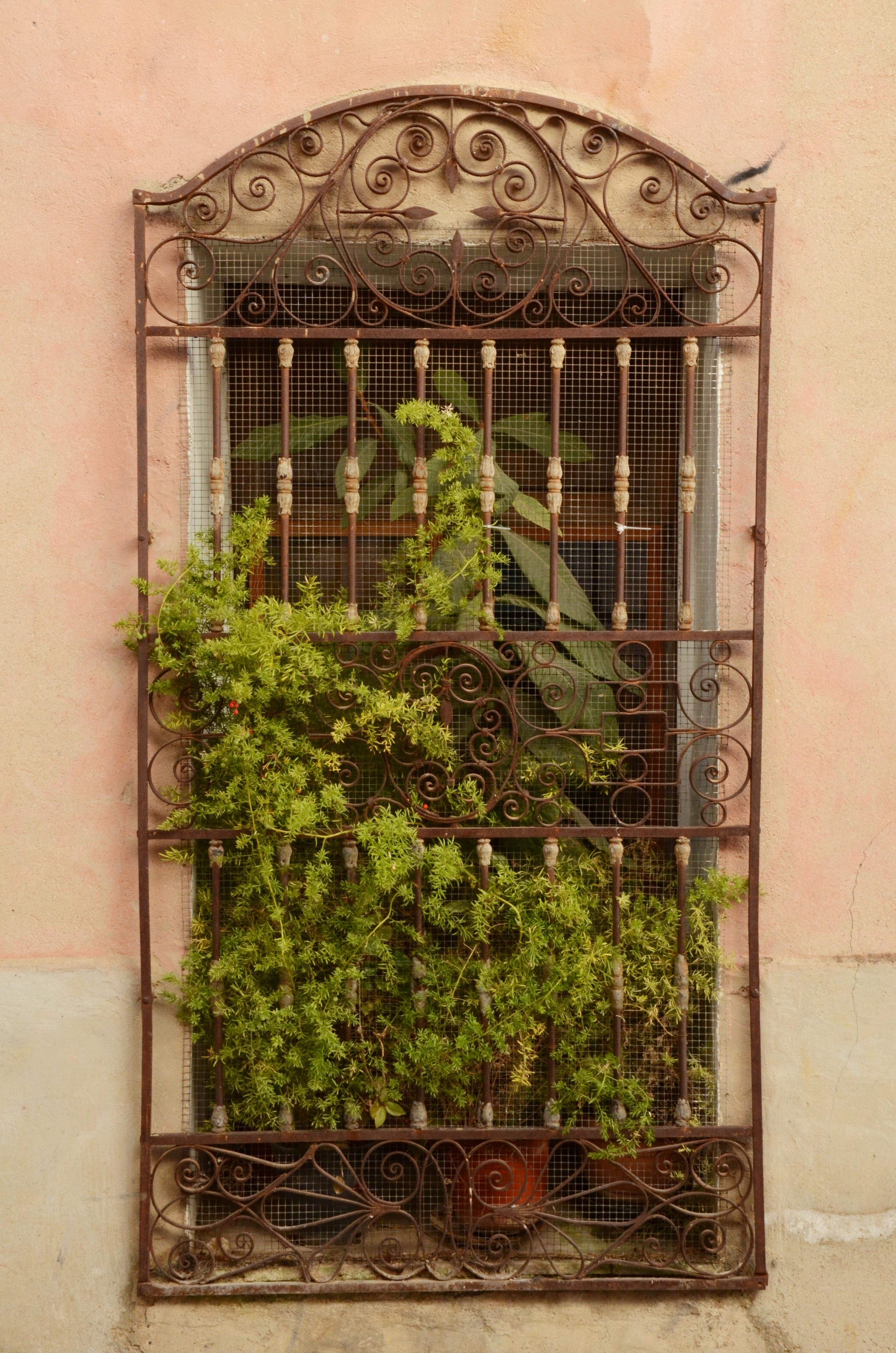 Gratis billeder : hegn, arkitektur, plante, træ, hus, vindue, væg ...