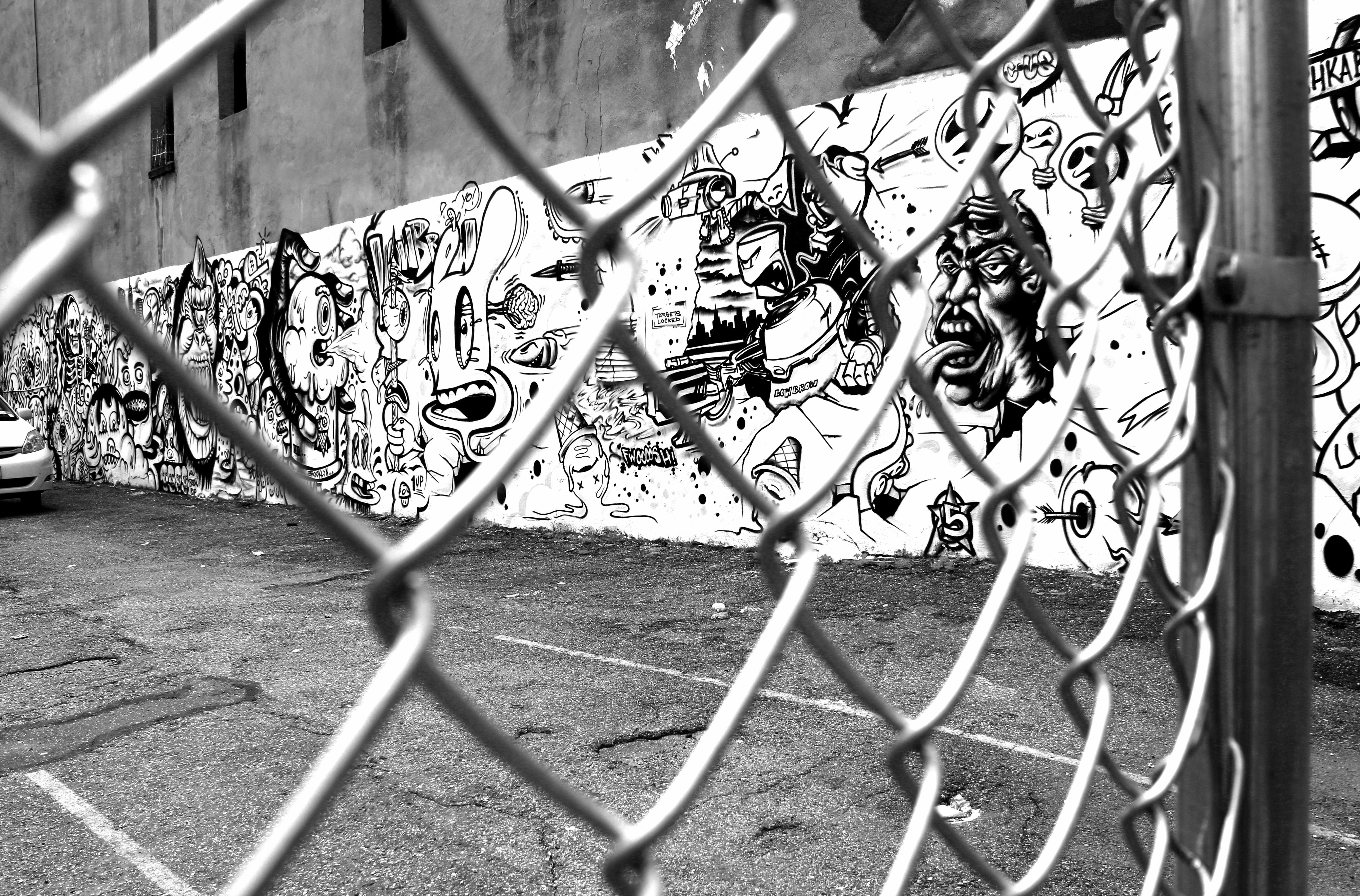 Free Images : black and white, wheel, flower, new york, vehicle ...
