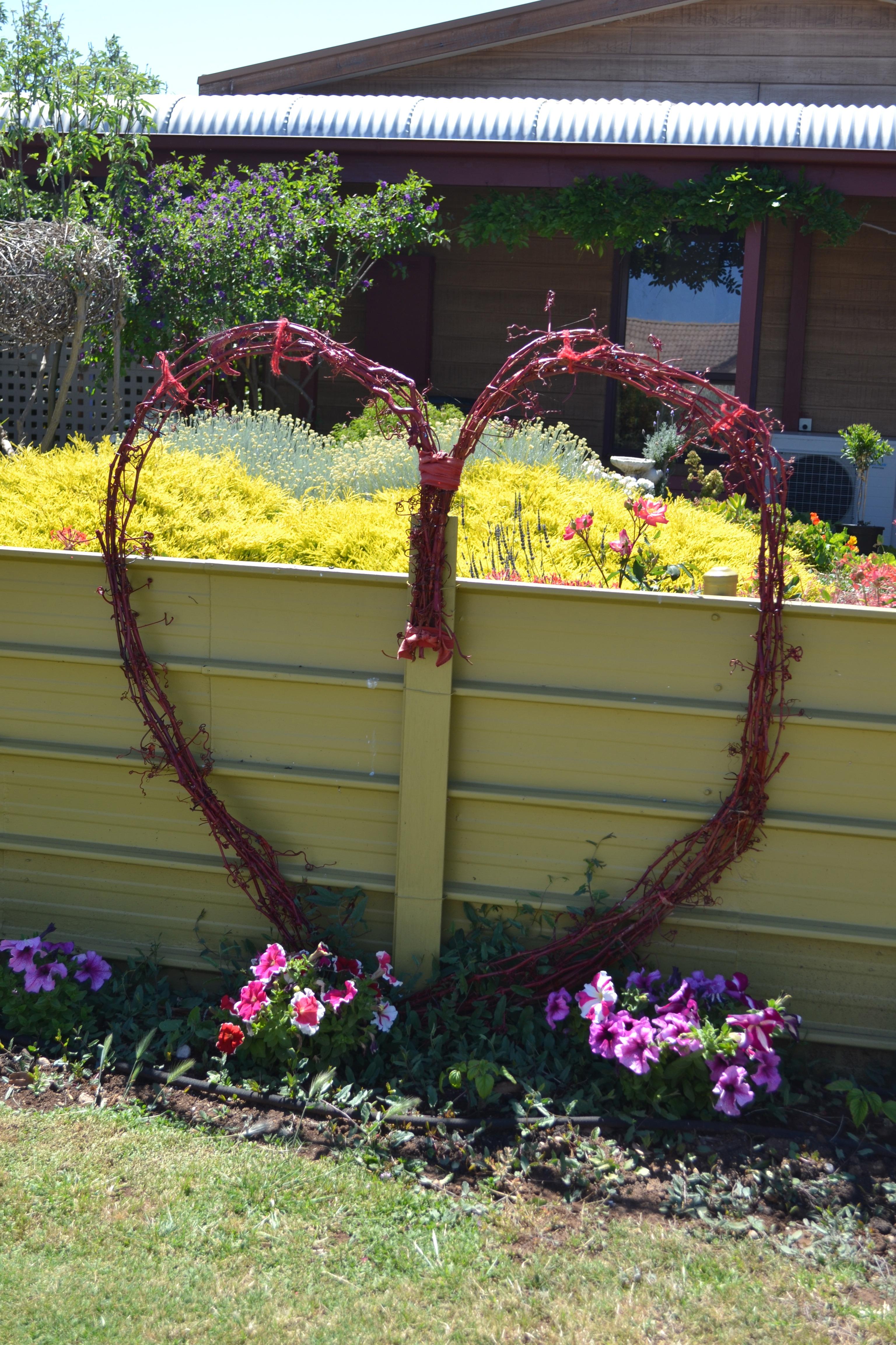 Kostenlose Foto Zaun Pflanze Rasen Blume Herz Hinterhof