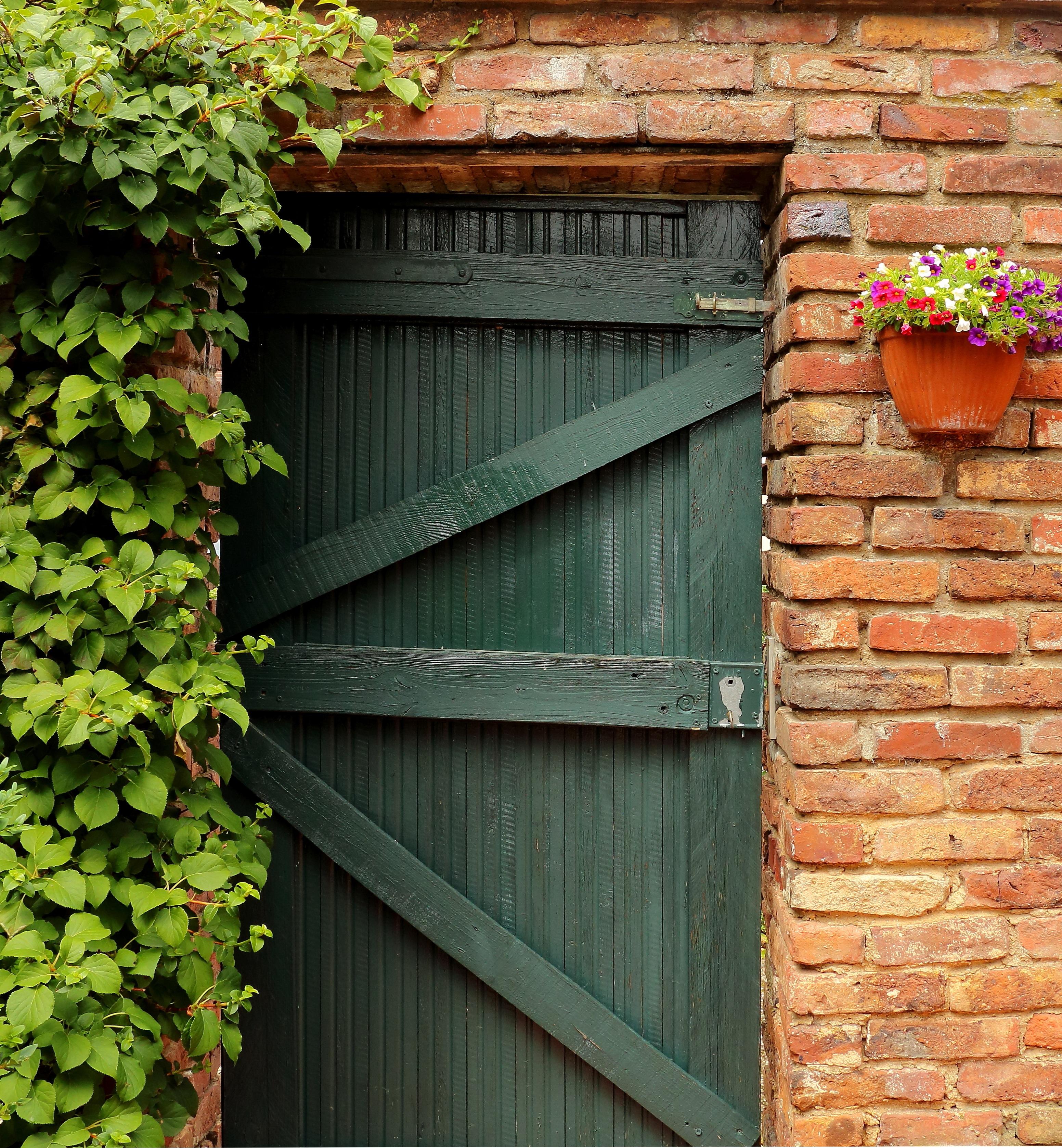 Images Gratuites Clôture Bois Fenêtre Cabanon Vert Mur De - Porte de jardin en bois