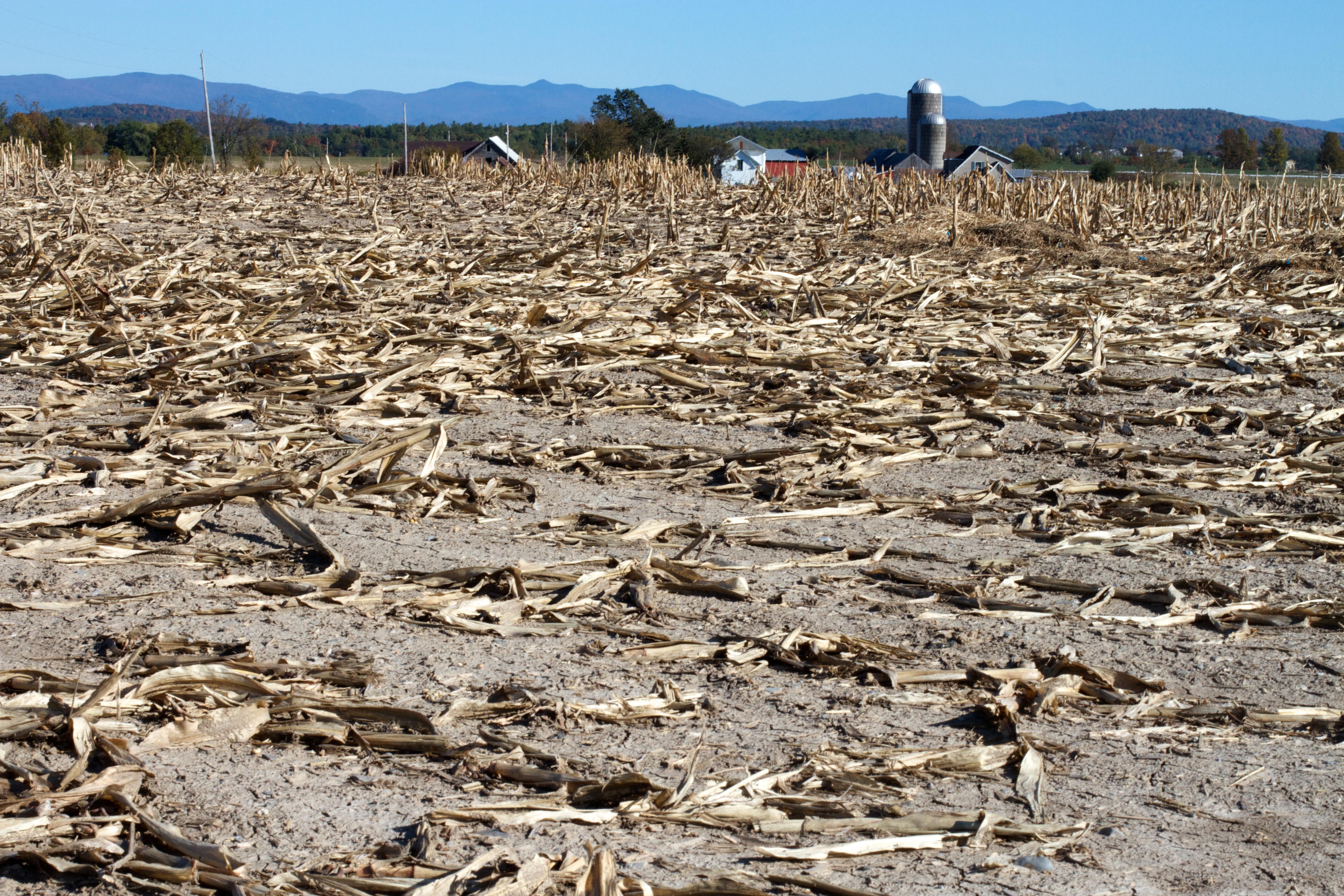 Kostenlose foto : Feld, Boden, Landwirtschaft, Geologie ...