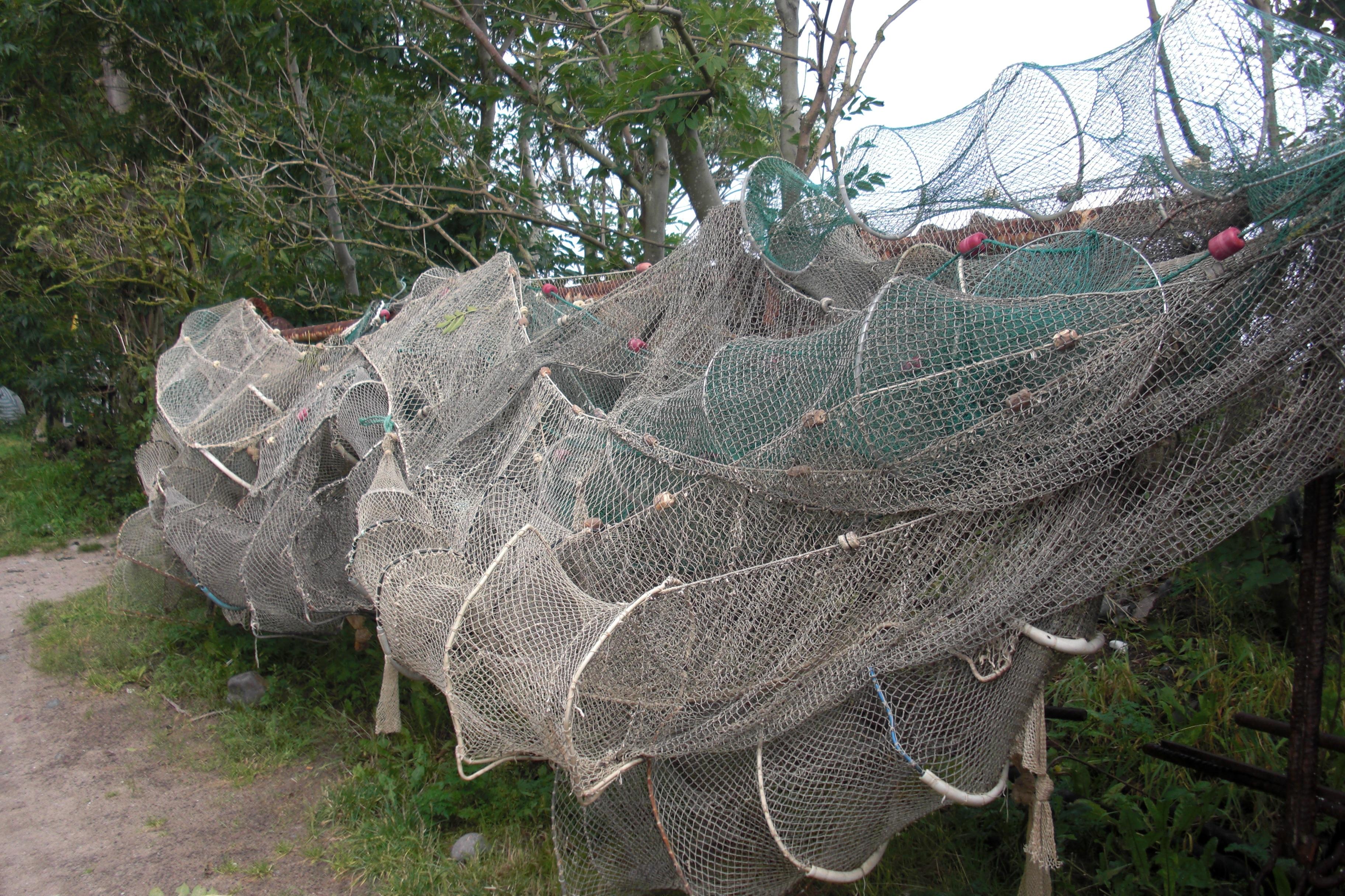 фото самоловы для рыбы из сетки кинематографисты когда-нибудь