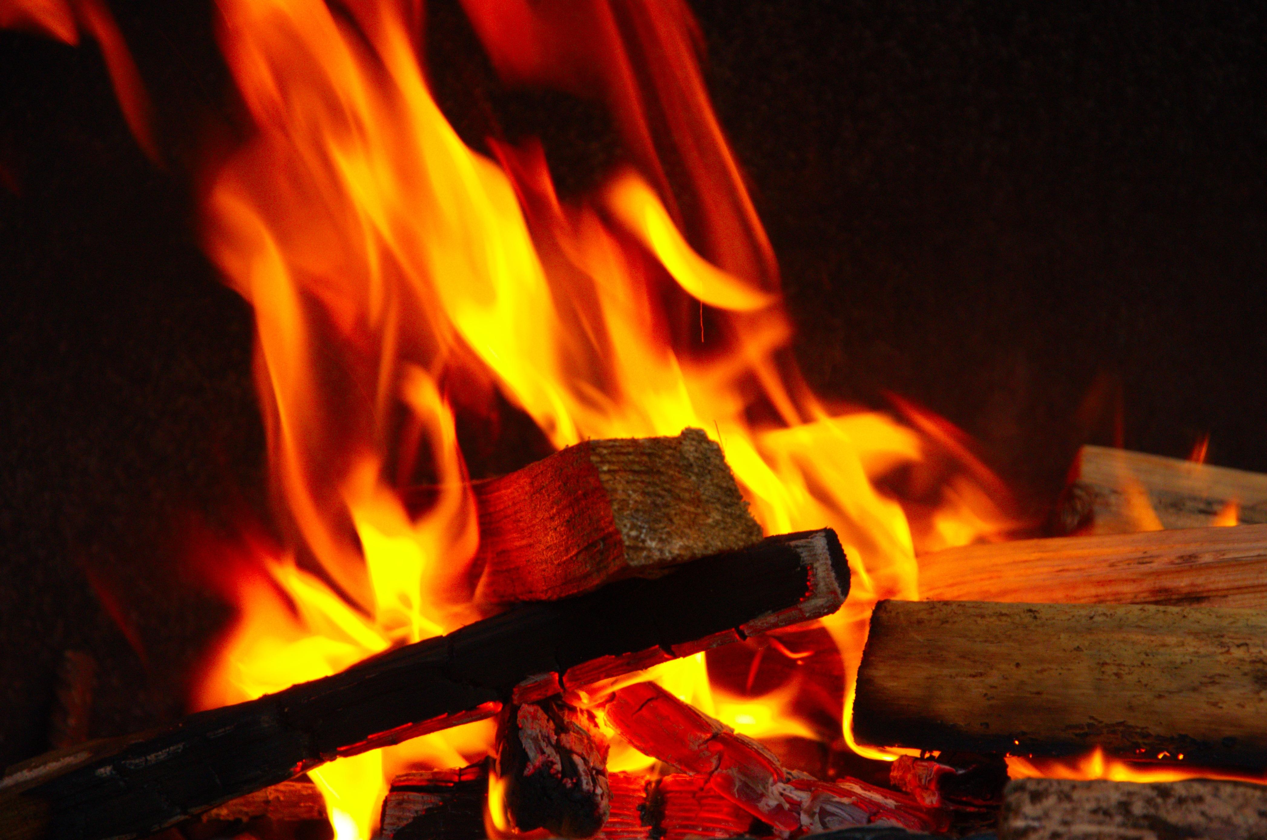 Fotos gratis fuego hoguera parrilla un brote de la - Parrilla de la vanguardia ...
