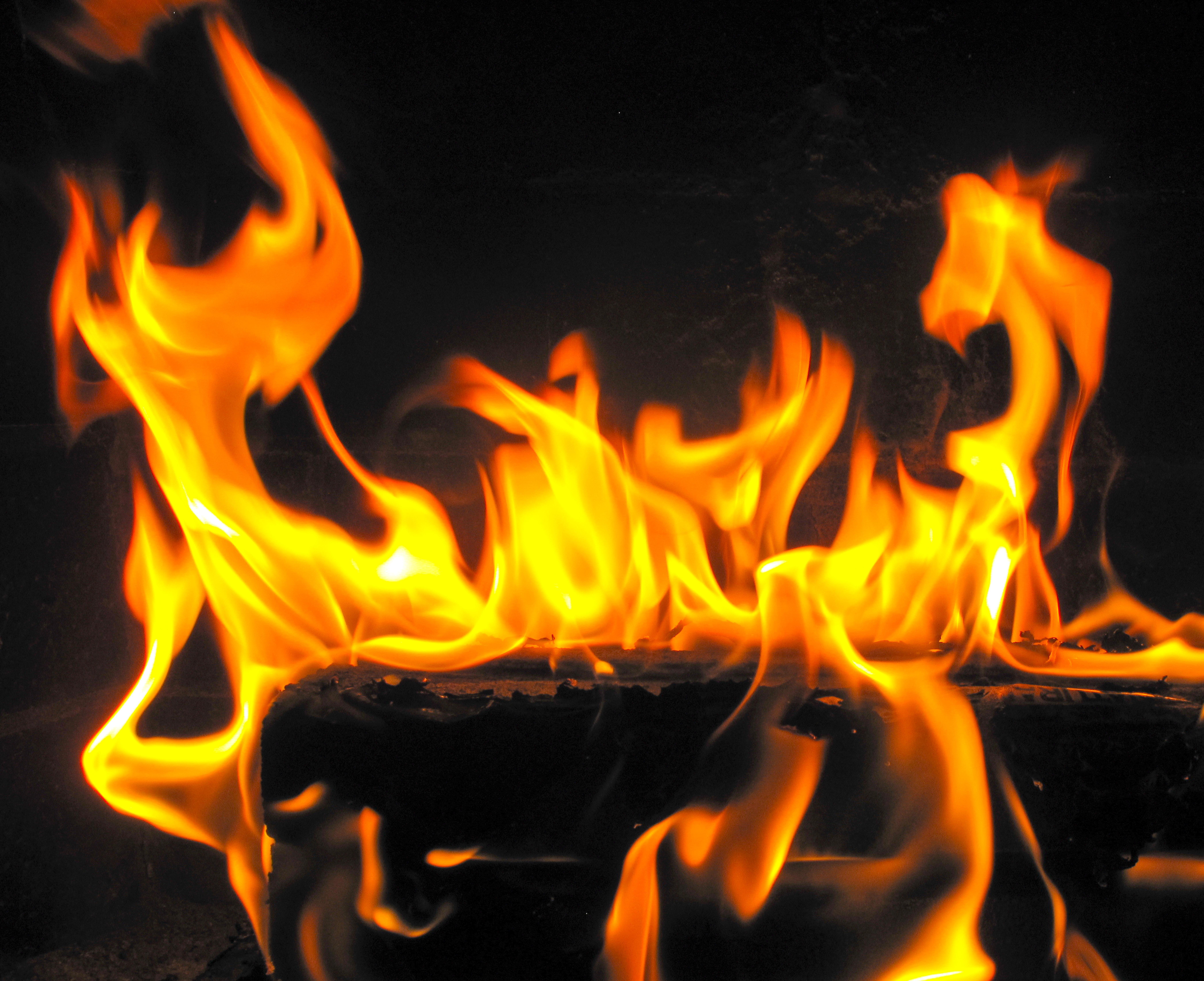 Show de fuego en zorrilandia en el seb - 1 4