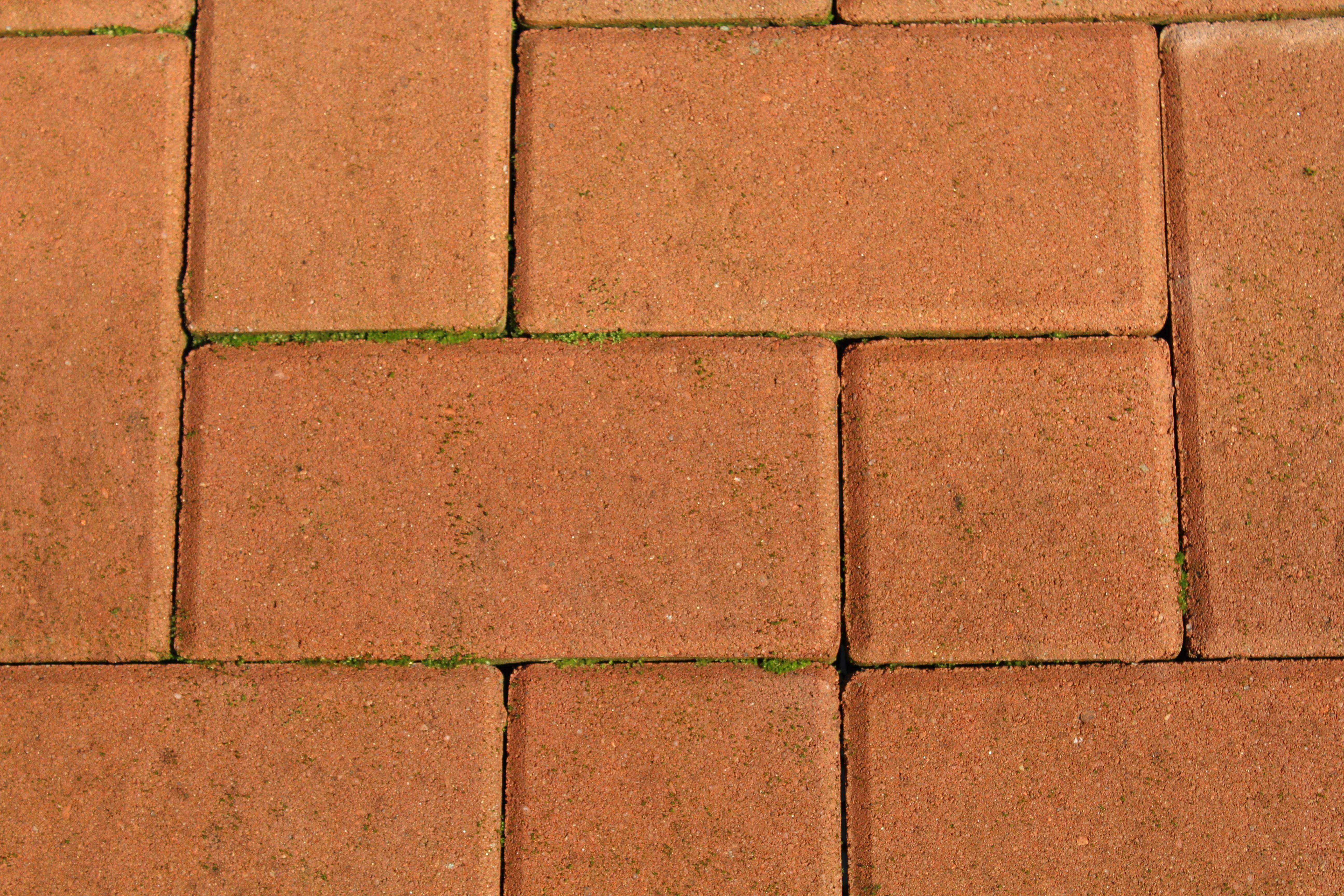 Fotos gratis piso edificio pared suelo azulejo - Azulejos de suelo ...