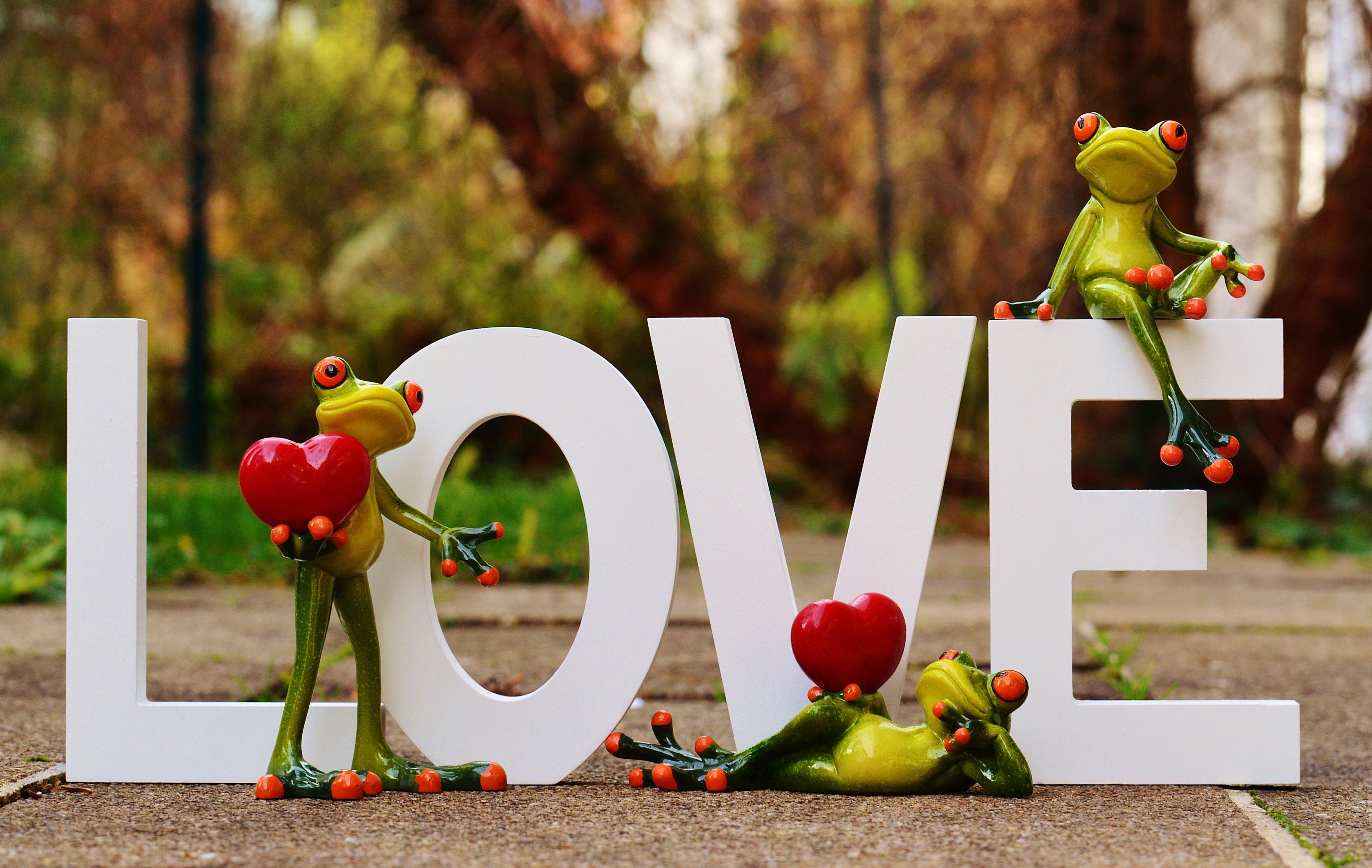 Images gratuites fleur animal mignonne amour c ur printemps vert rouge couleur l - Images coeur gratuites ...